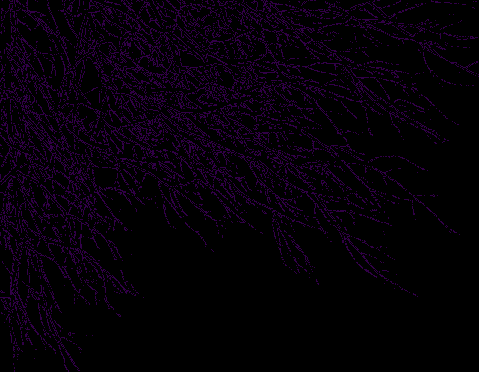dark purple background – 1599×1241 High Definition Wallpaper ...