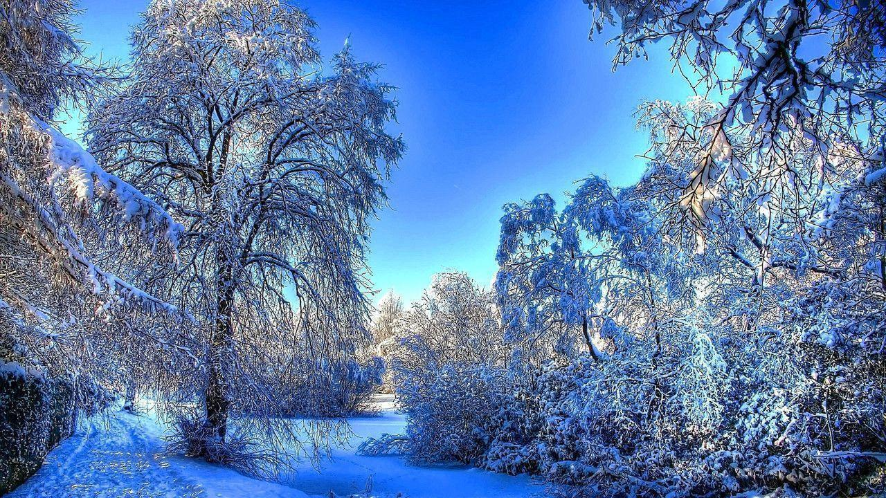 Winter Screensavers And Wallpapers