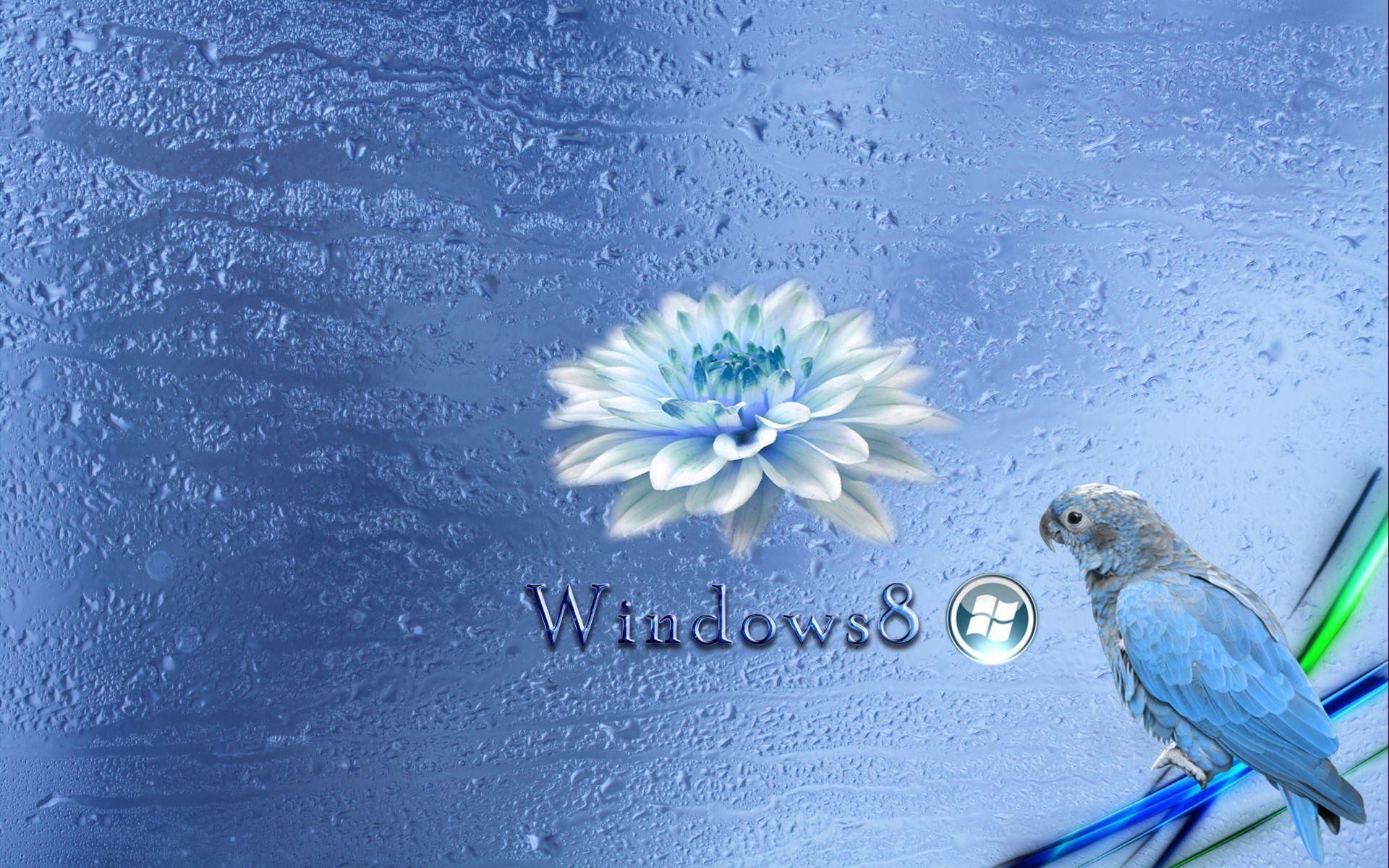 Free Live Wallpapers For Windows 8: Windows 8 HD Wallpapers
