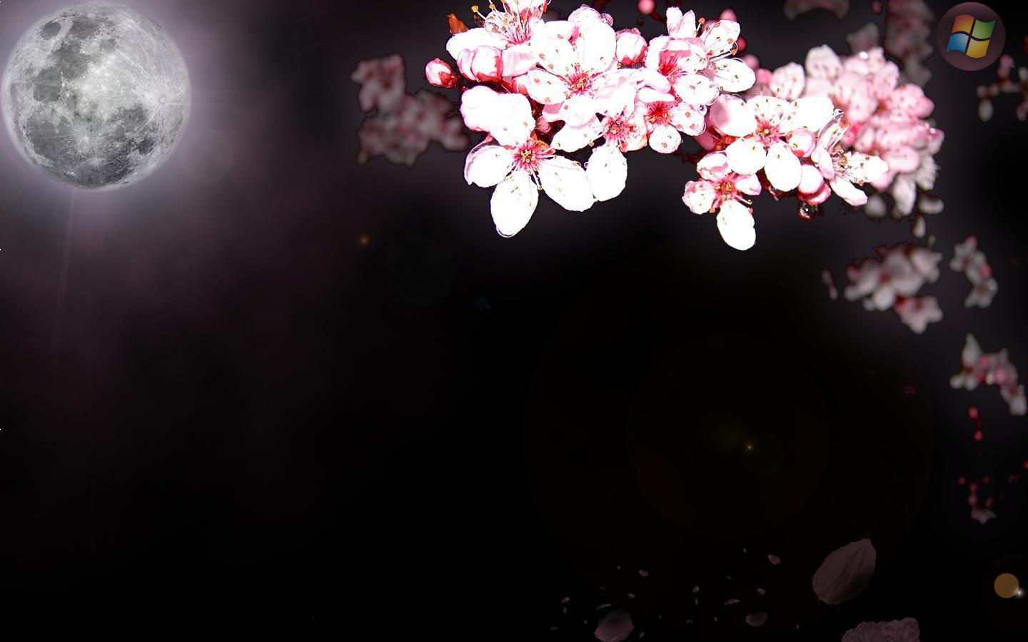 Sakura Backgrounds - Wallpaper Cave