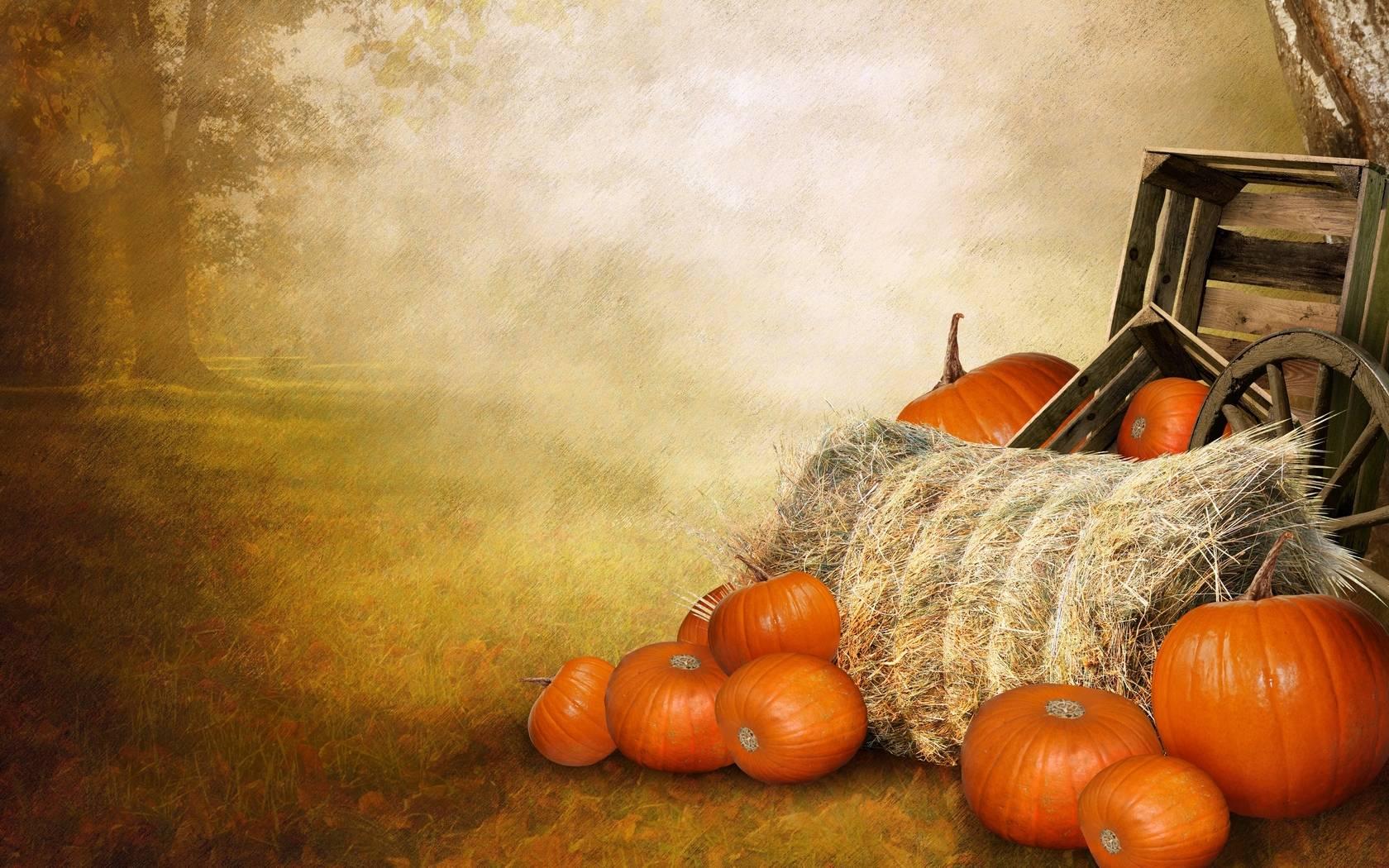 Pumpkin Wallpapers Free - Wallpaper Cave