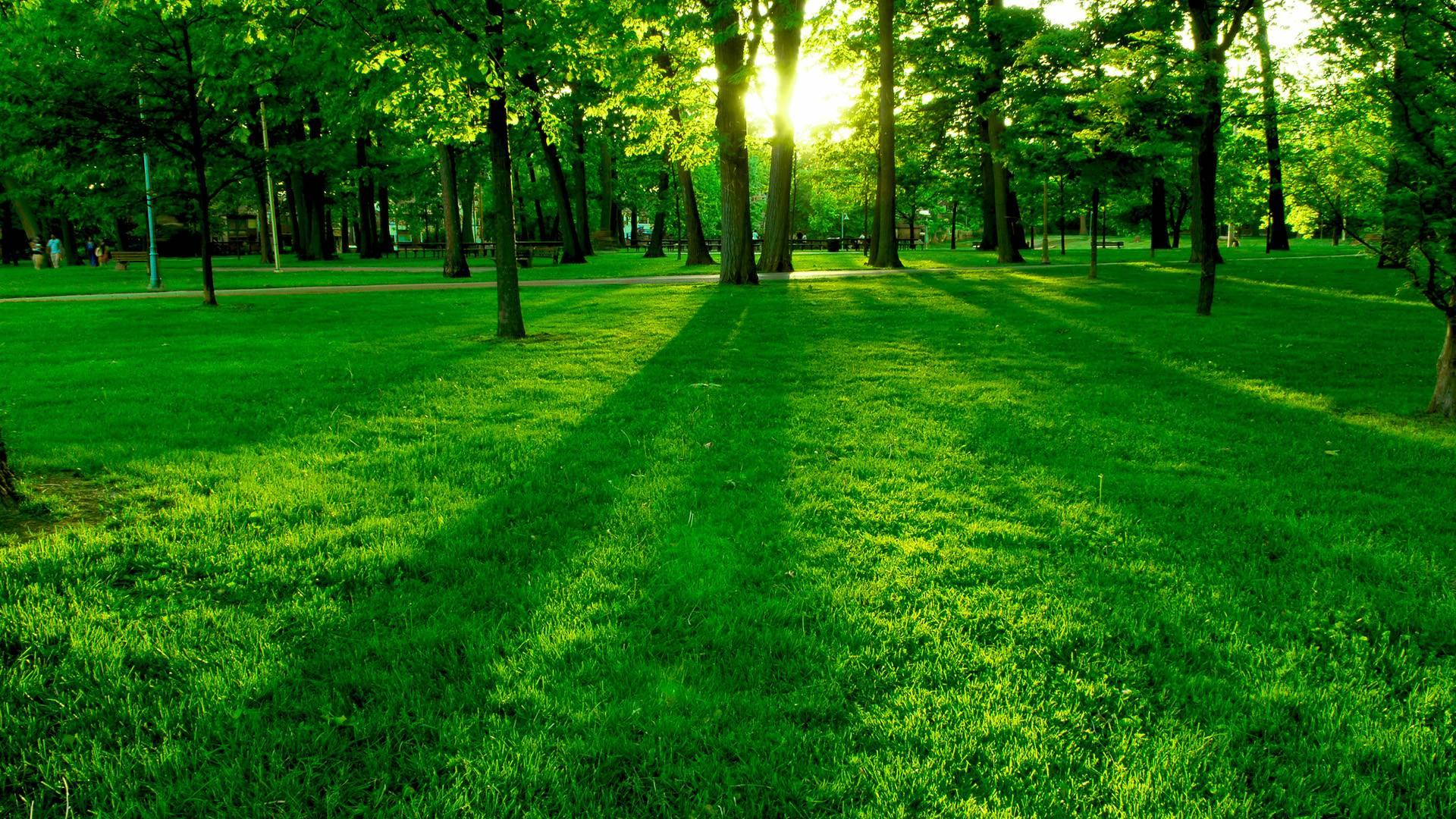 best nature1920x1080 iimgurcom - photo #4