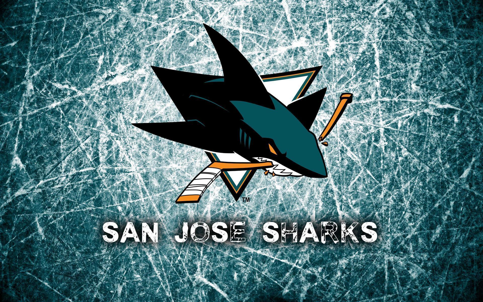 San Jose Sharks Wallpapers - Wallpaper Cave