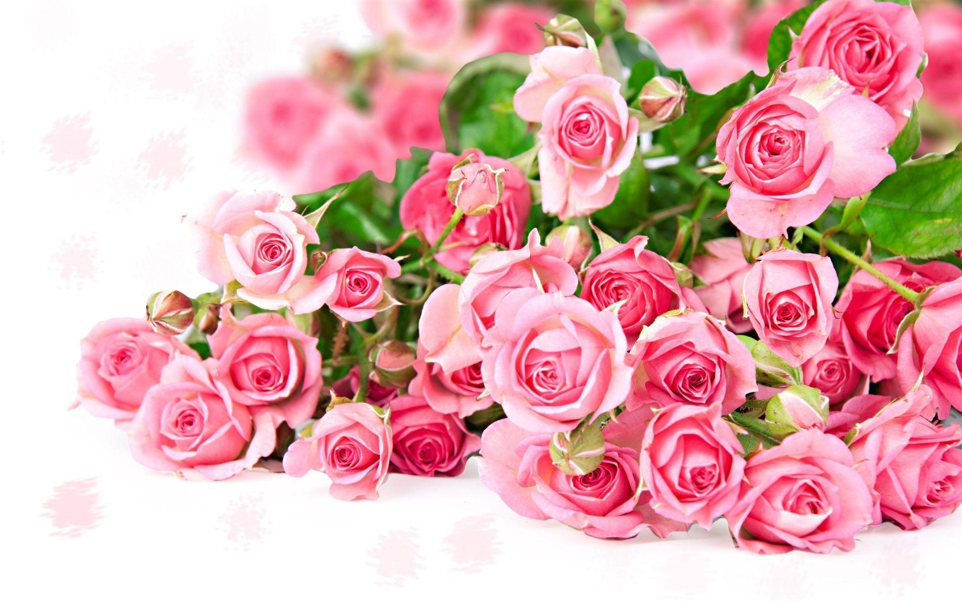 Flowers Bouquet Roses Wallpapers Image 19689 Full HD Wallpapers