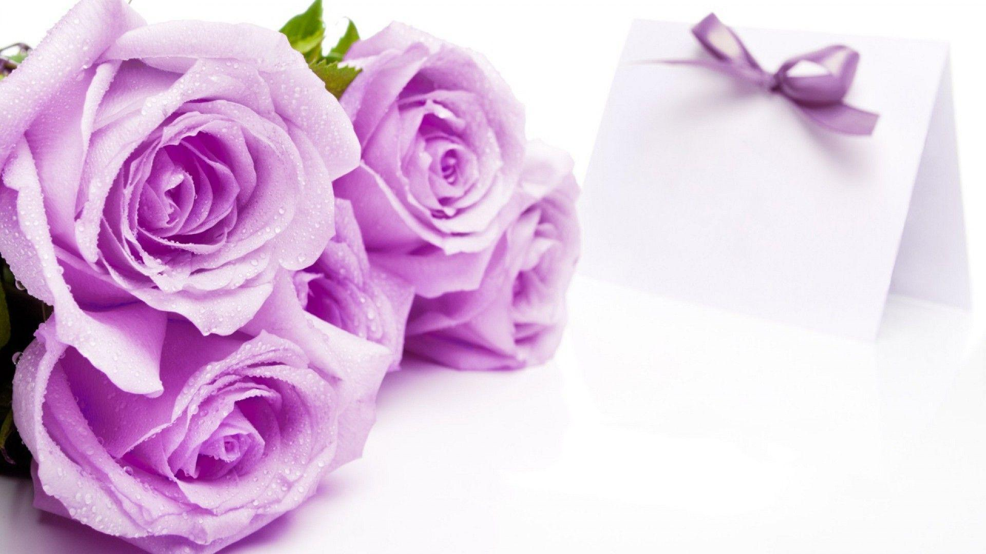 elegant purple wedding background