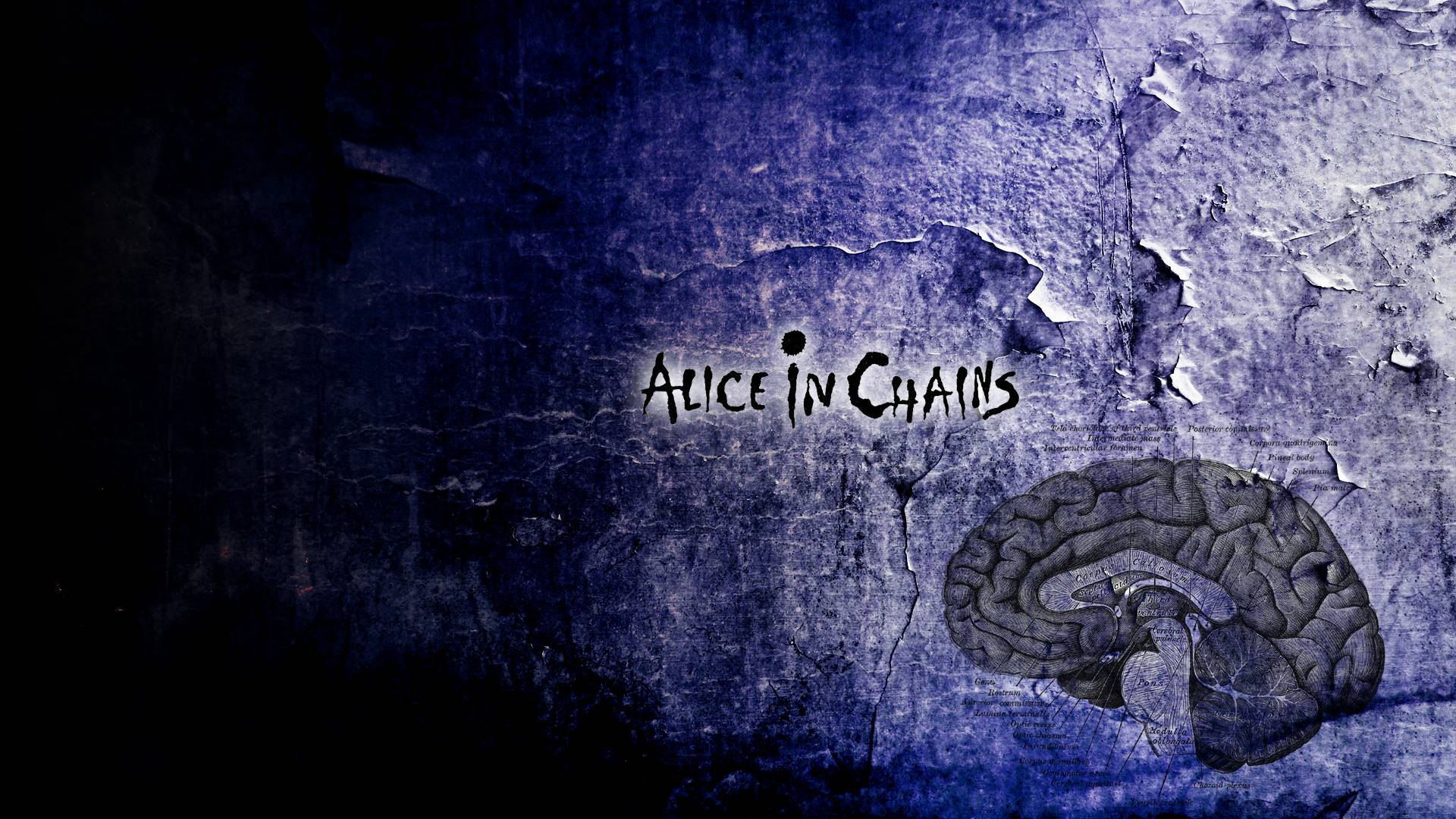 Alice in chains wallpapers wallpaper cave for In wallpaper