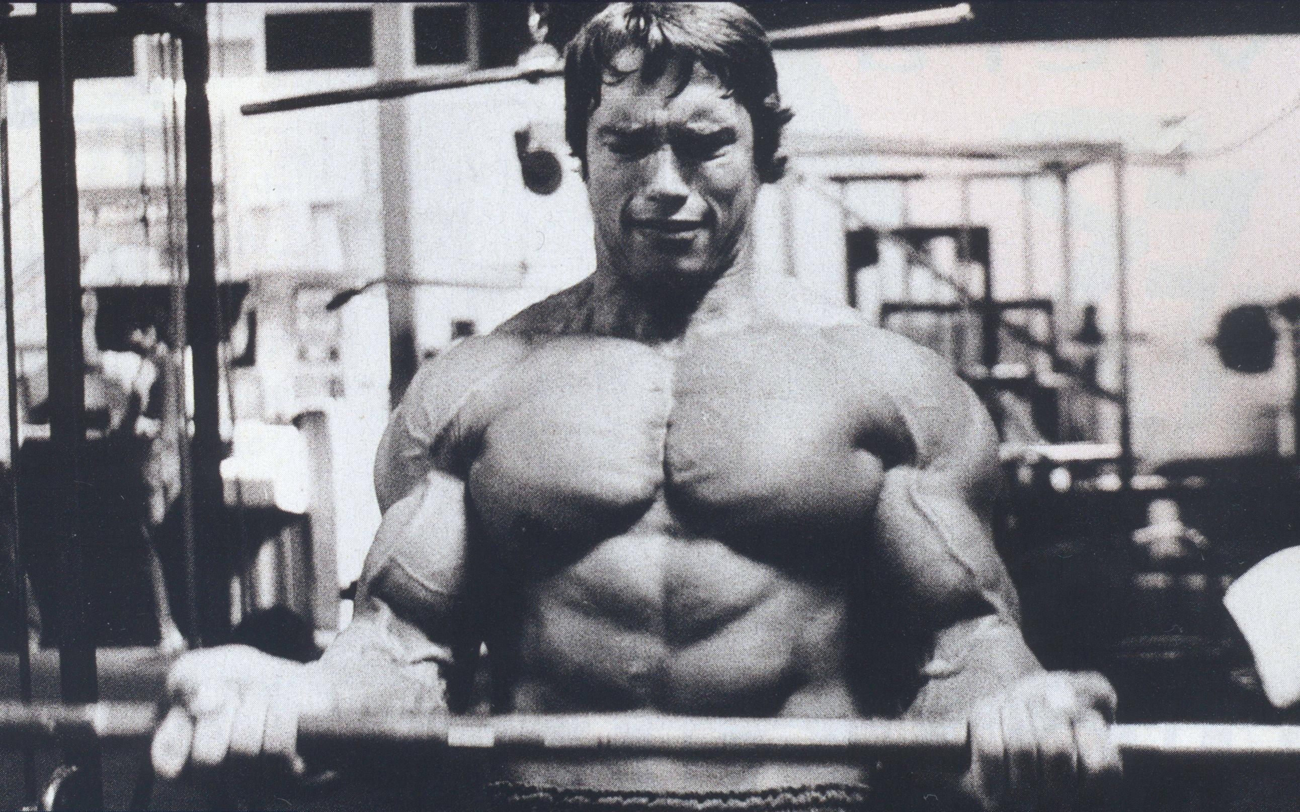 Arnold Wallpaper