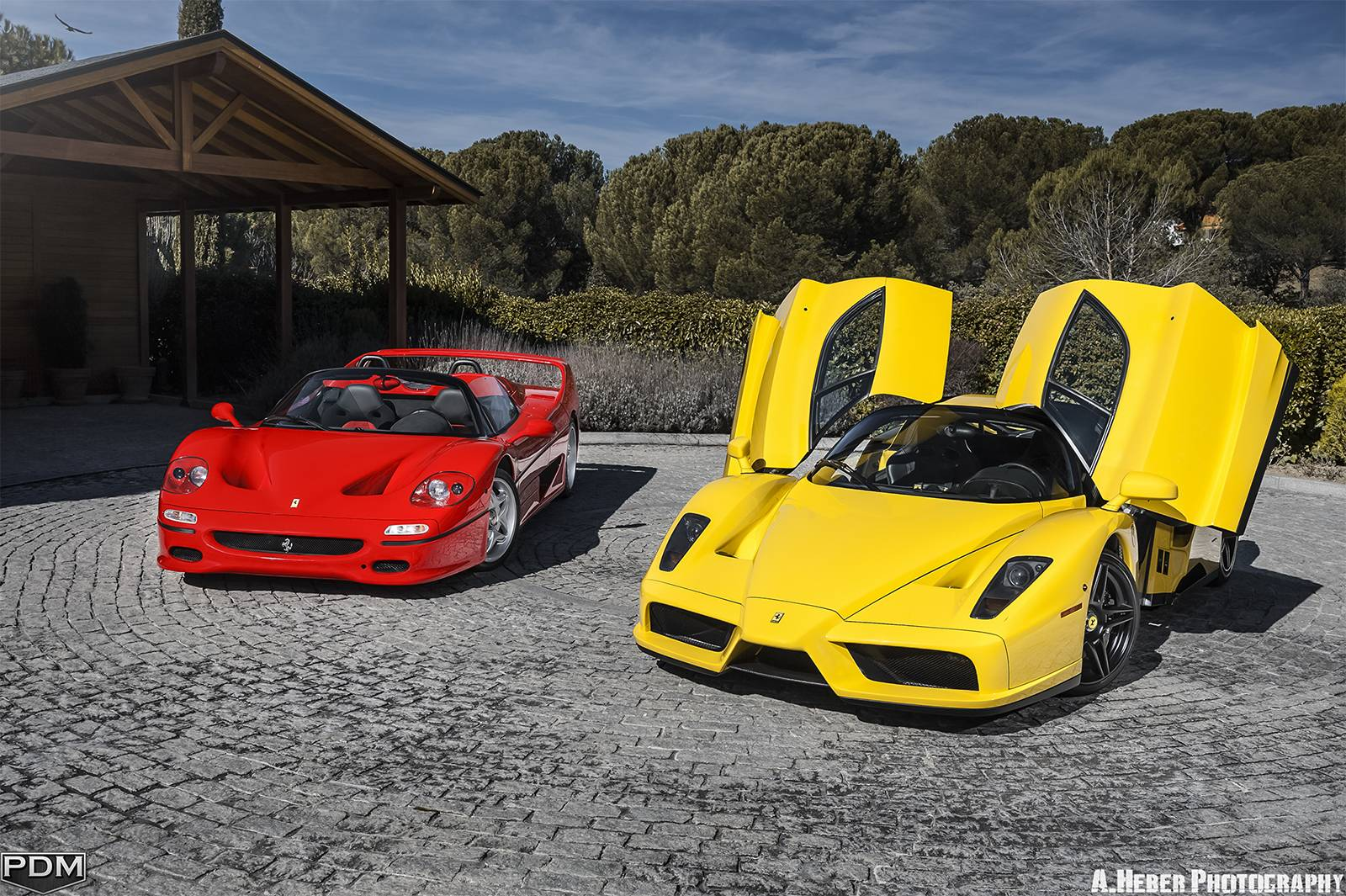 Stunning Ferrari Enzo And F50 2015