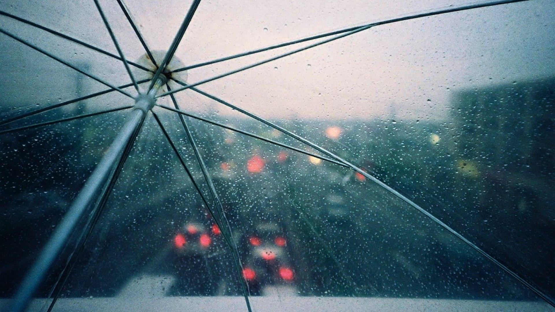 Wallpapers Collection «Rain Wallpapers»