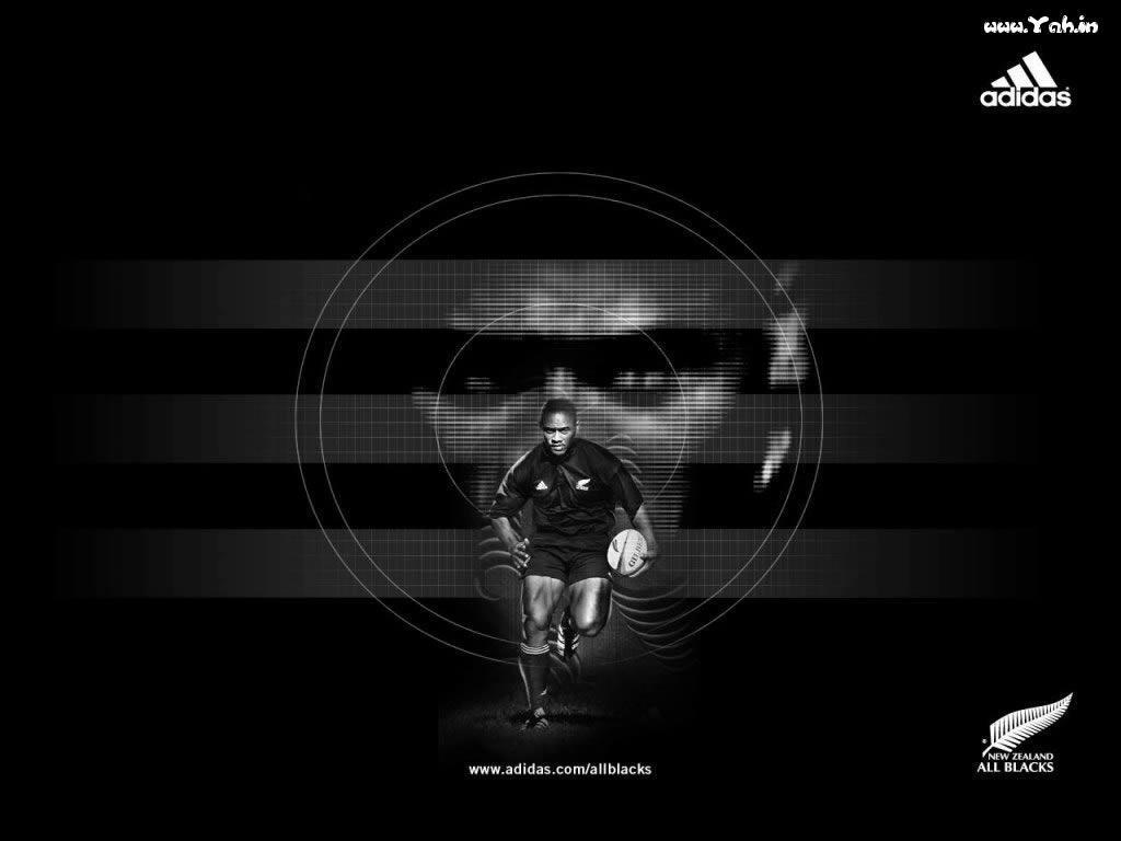 Pix For > New Zealand All Blacks Wallpapers
