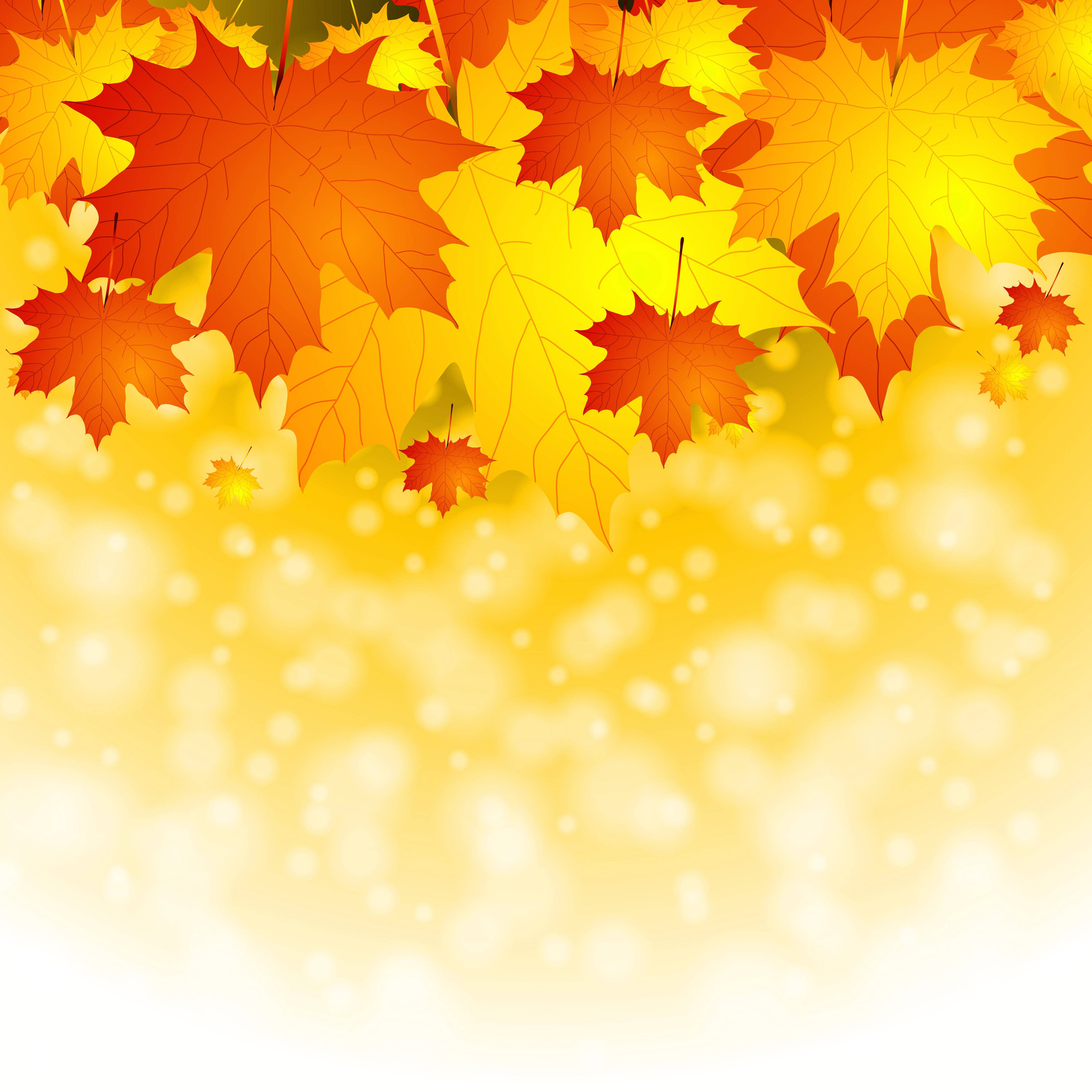 It is an image of Witty Fall Leaf Background
