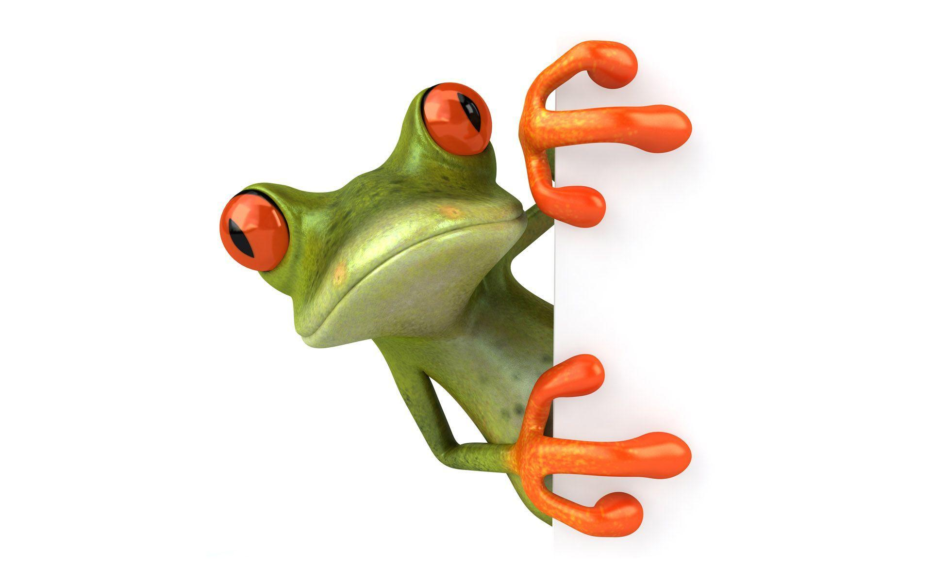 3d Wallpapers Wallpapers Cute Frog 1024x768 3d Wallpapers