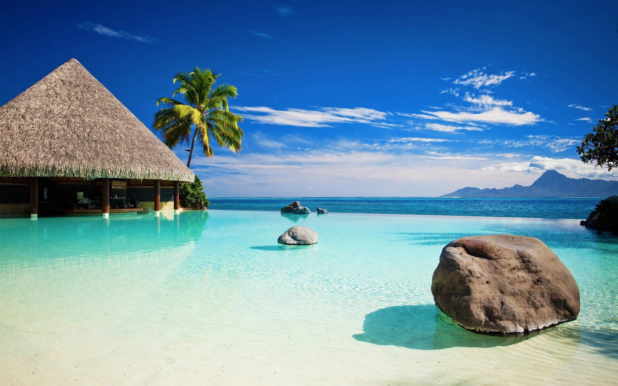 Wallpapers Collection «Tropical Wallpapers»
