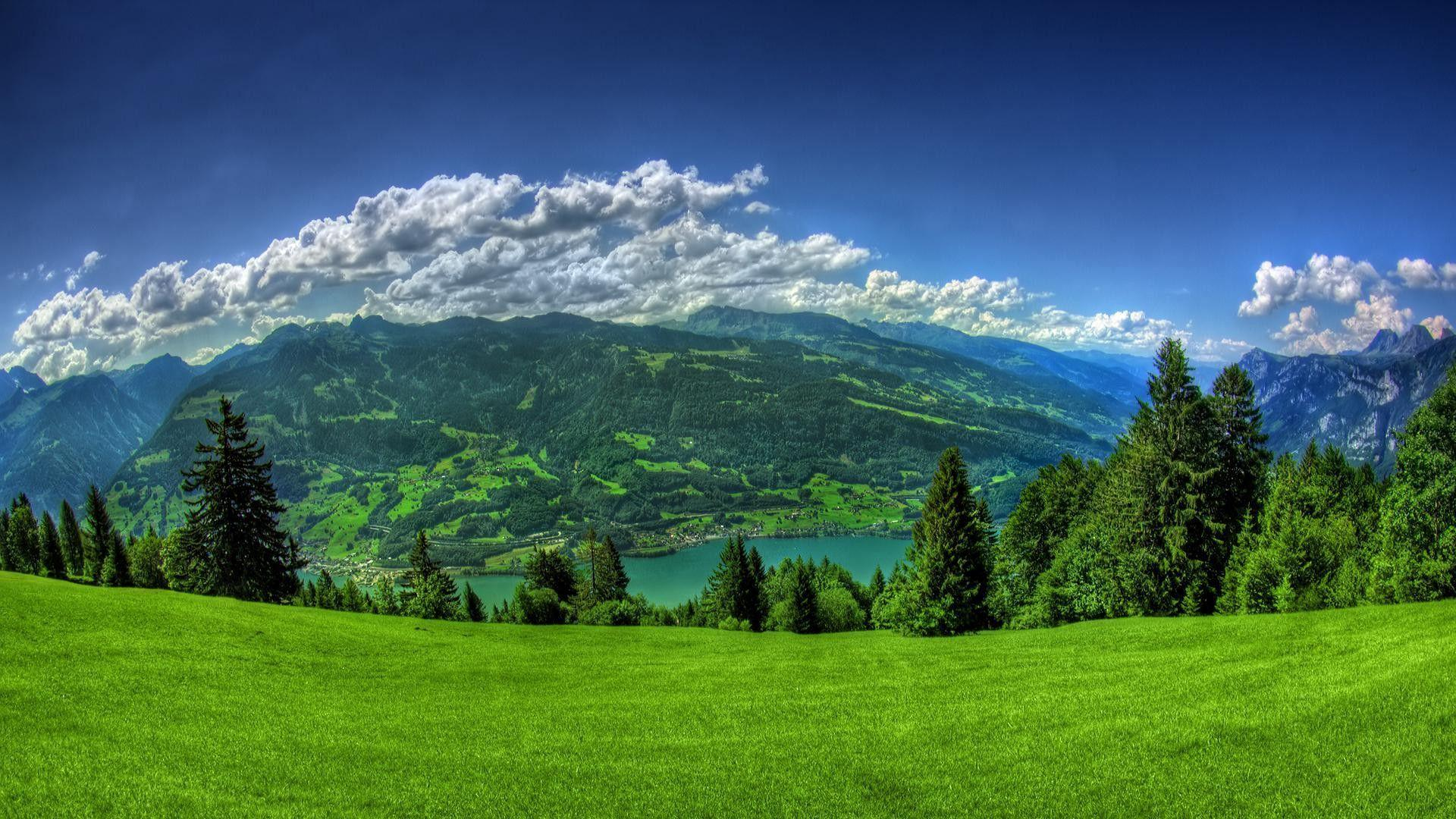 Landscape HD Green Wallpapers