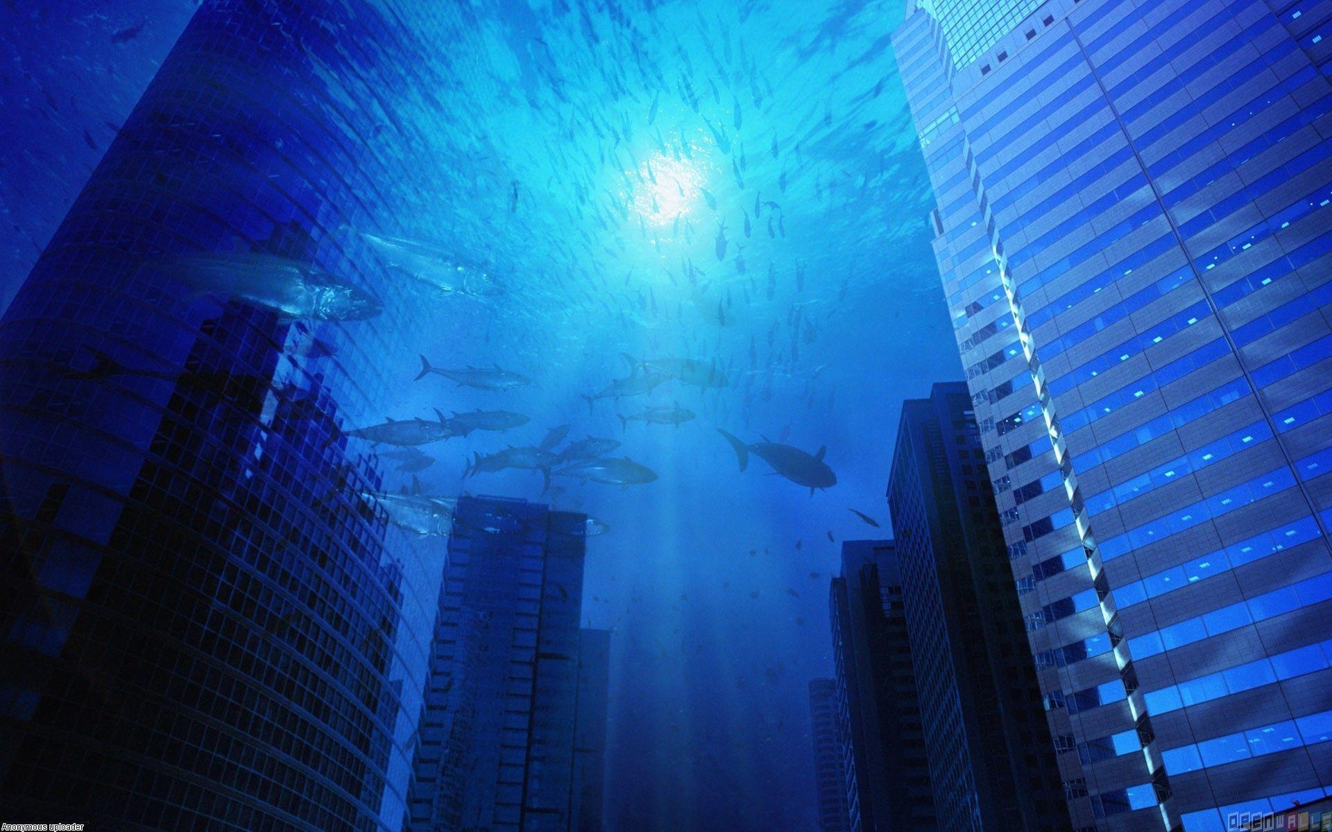 Under Ocean Wallpaper