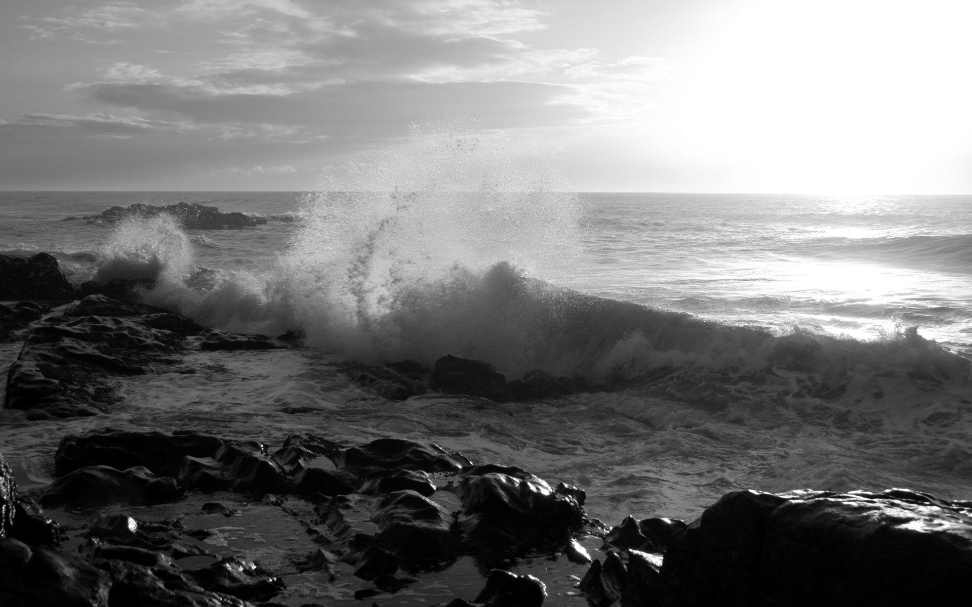 White and black beach wallpapers exclusive photo