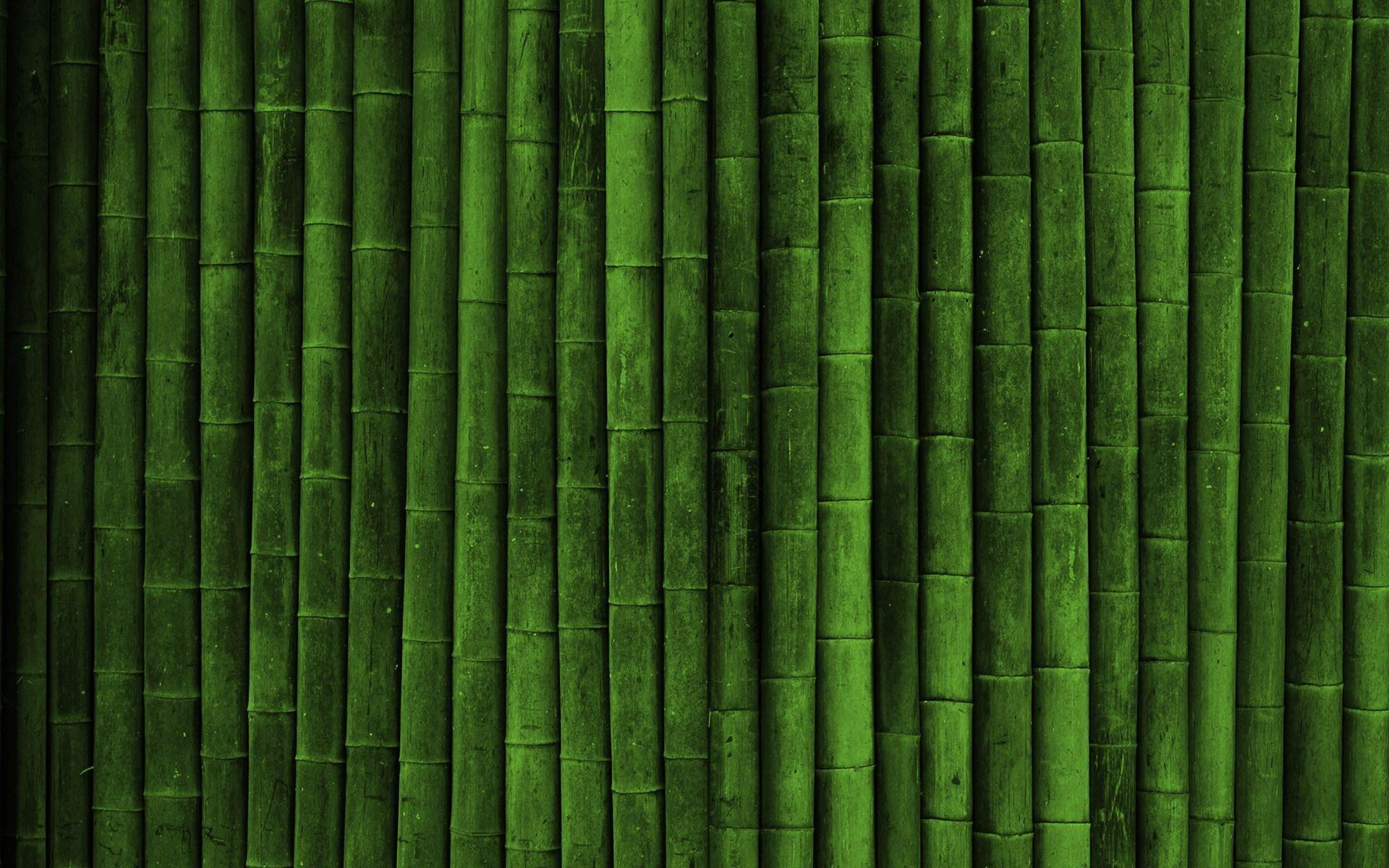 Bamboo Backgrounds Image Wallpaper Cave