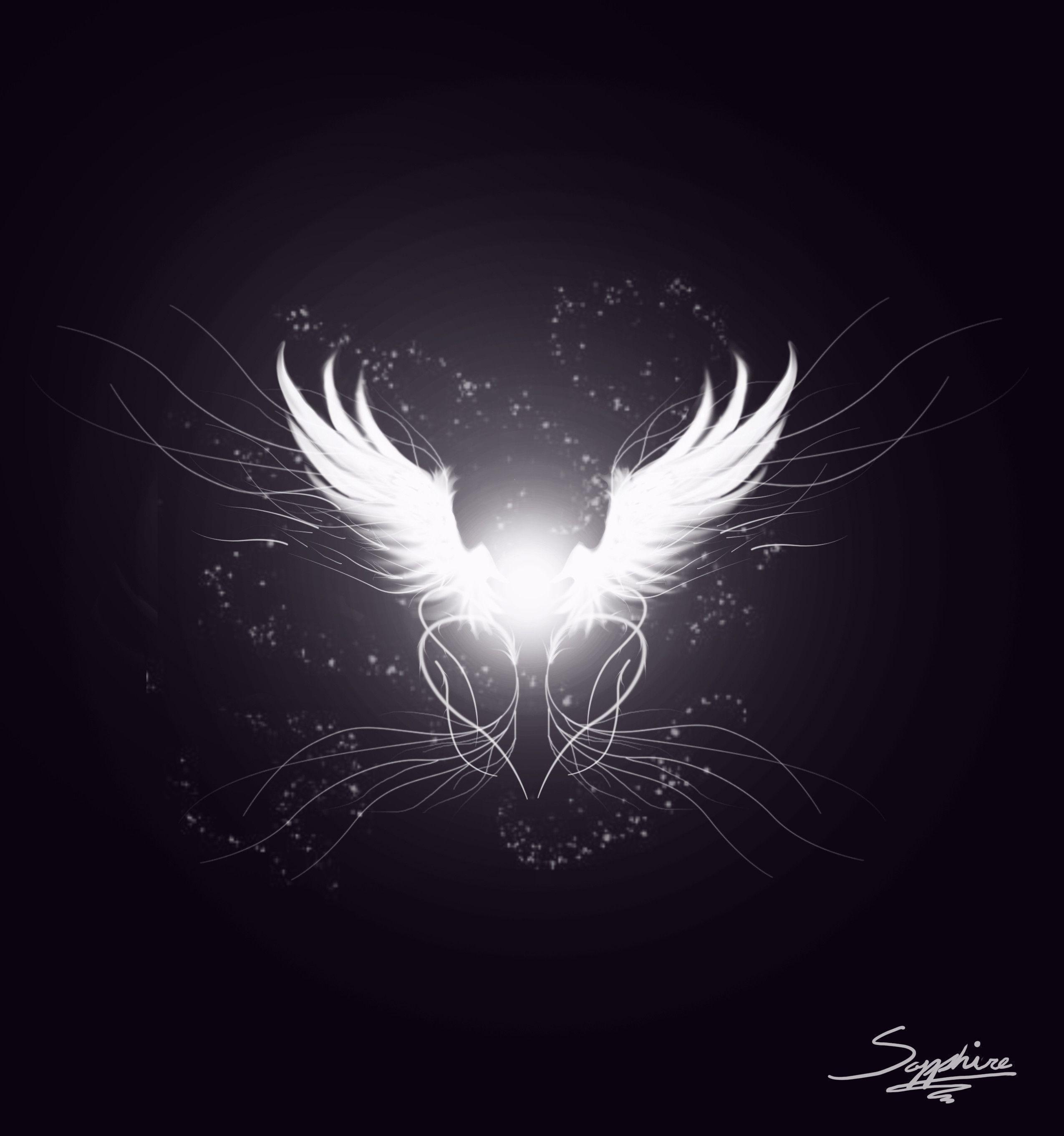 Angel Wings Wallpapers Wallpaper Cave