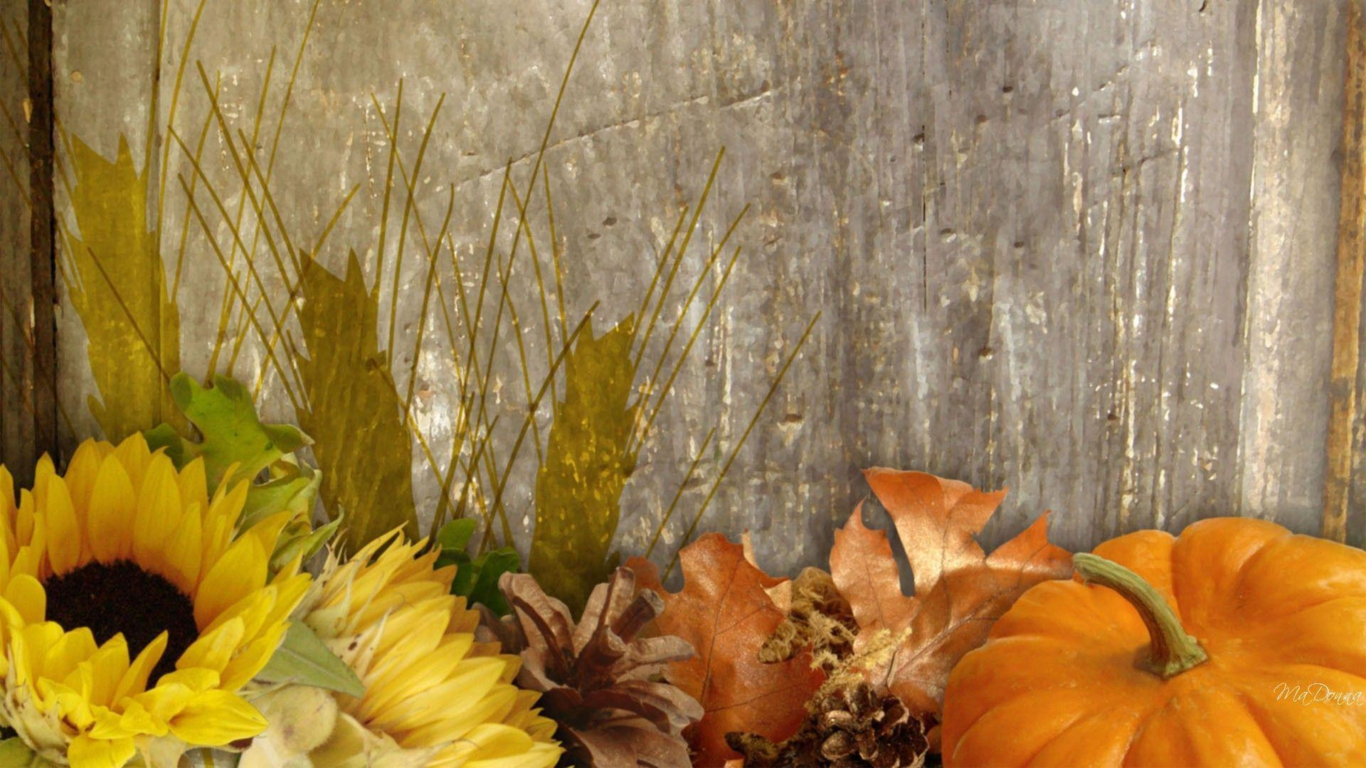 Fall Harvest Desktop Background, wallpaper, Fall Harvest Desktop