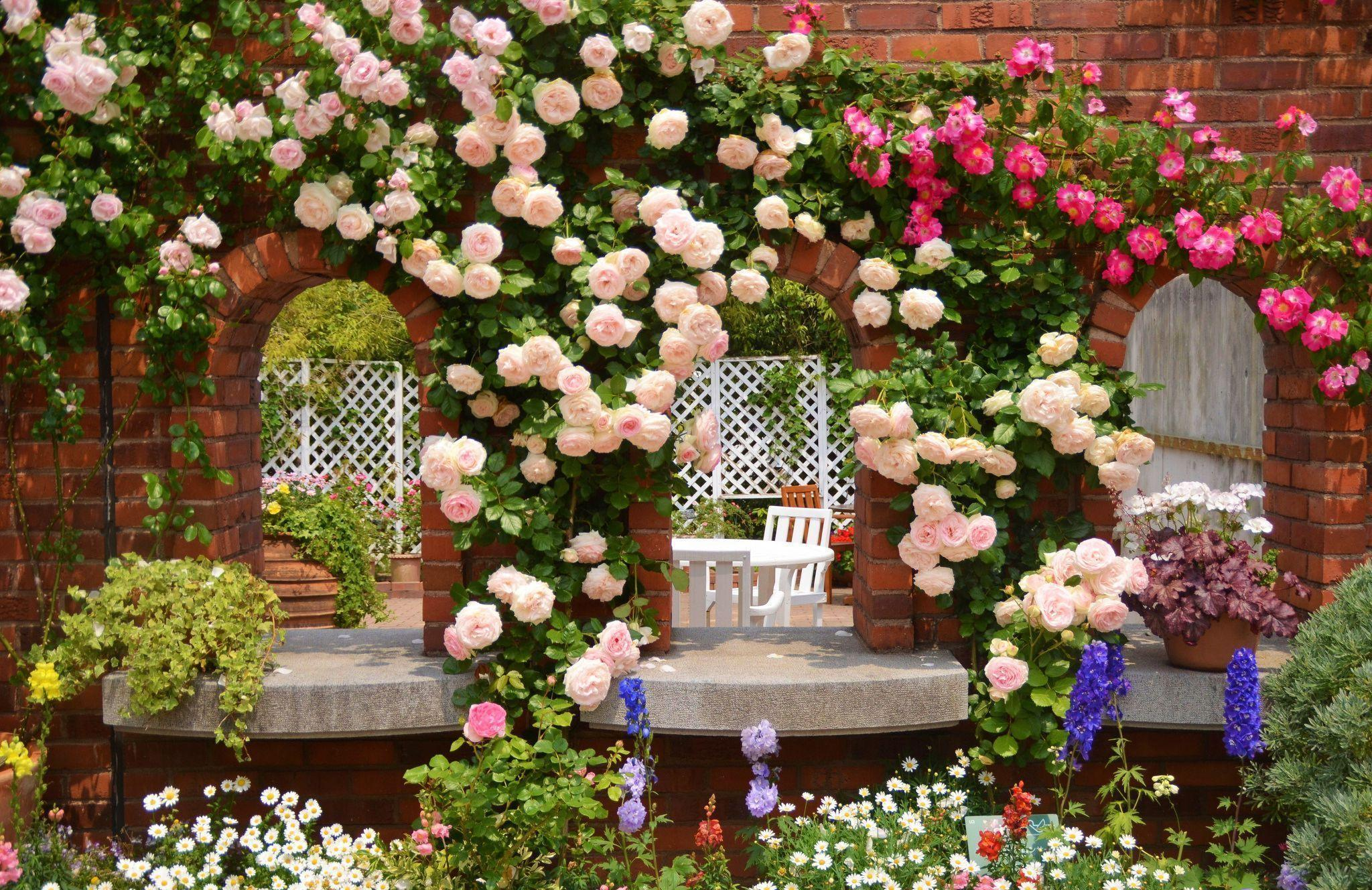 10 Rose Garden Wallpapers HD
