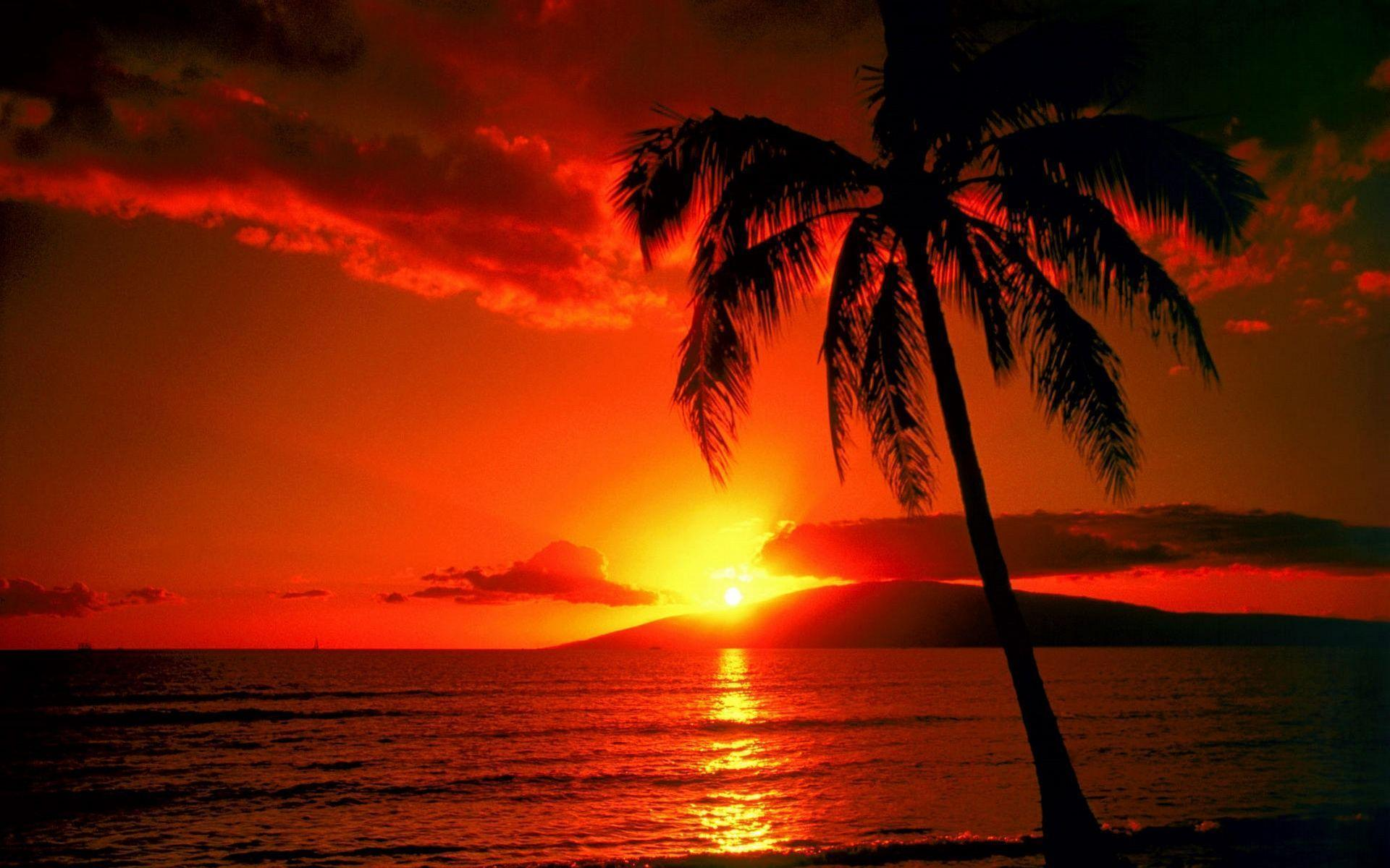 Sunset Beach HD Wallpapers | Beach sunset Desktop Images | Cool ...