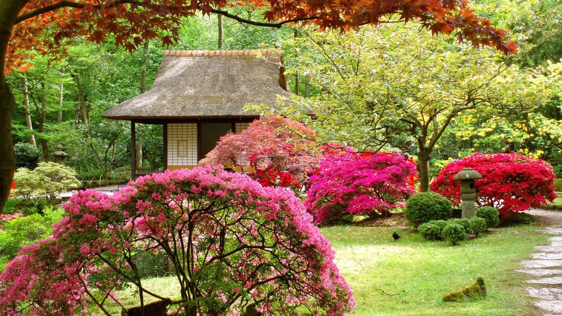 Japanese gardens wallpapers wallpaper cave for Japanese garden ideas