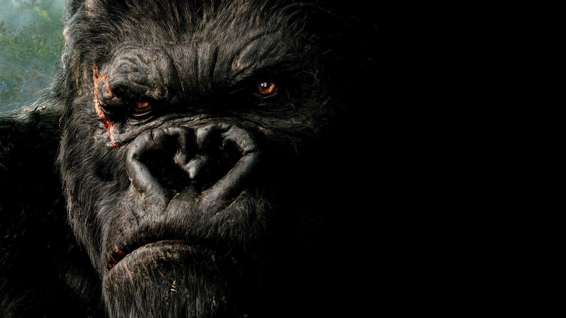 King kong wallpapers wallpaper cave - King kong 2005 hd wallpapers ...