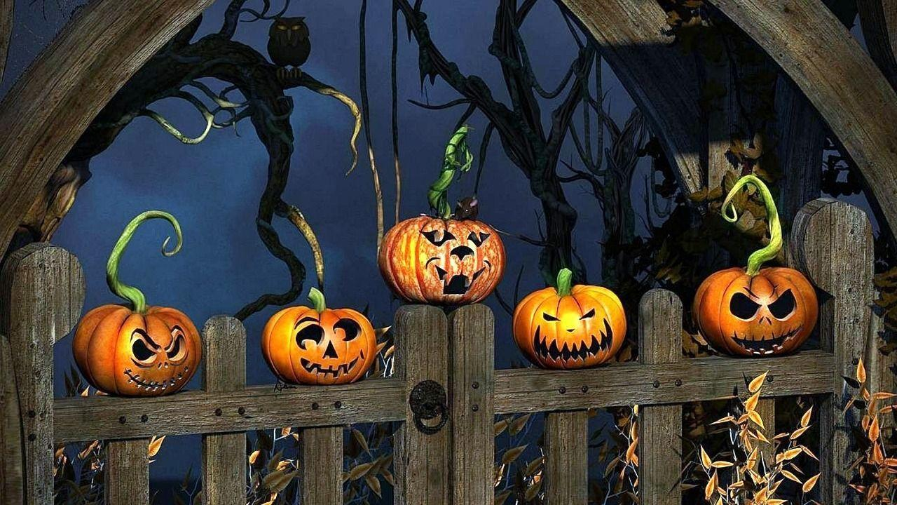 Funny Halloween Wallpaper Wallpaper HD Image 3667