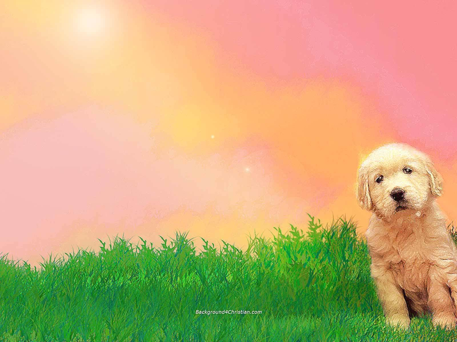 dog wallpapers - wallpaper cave