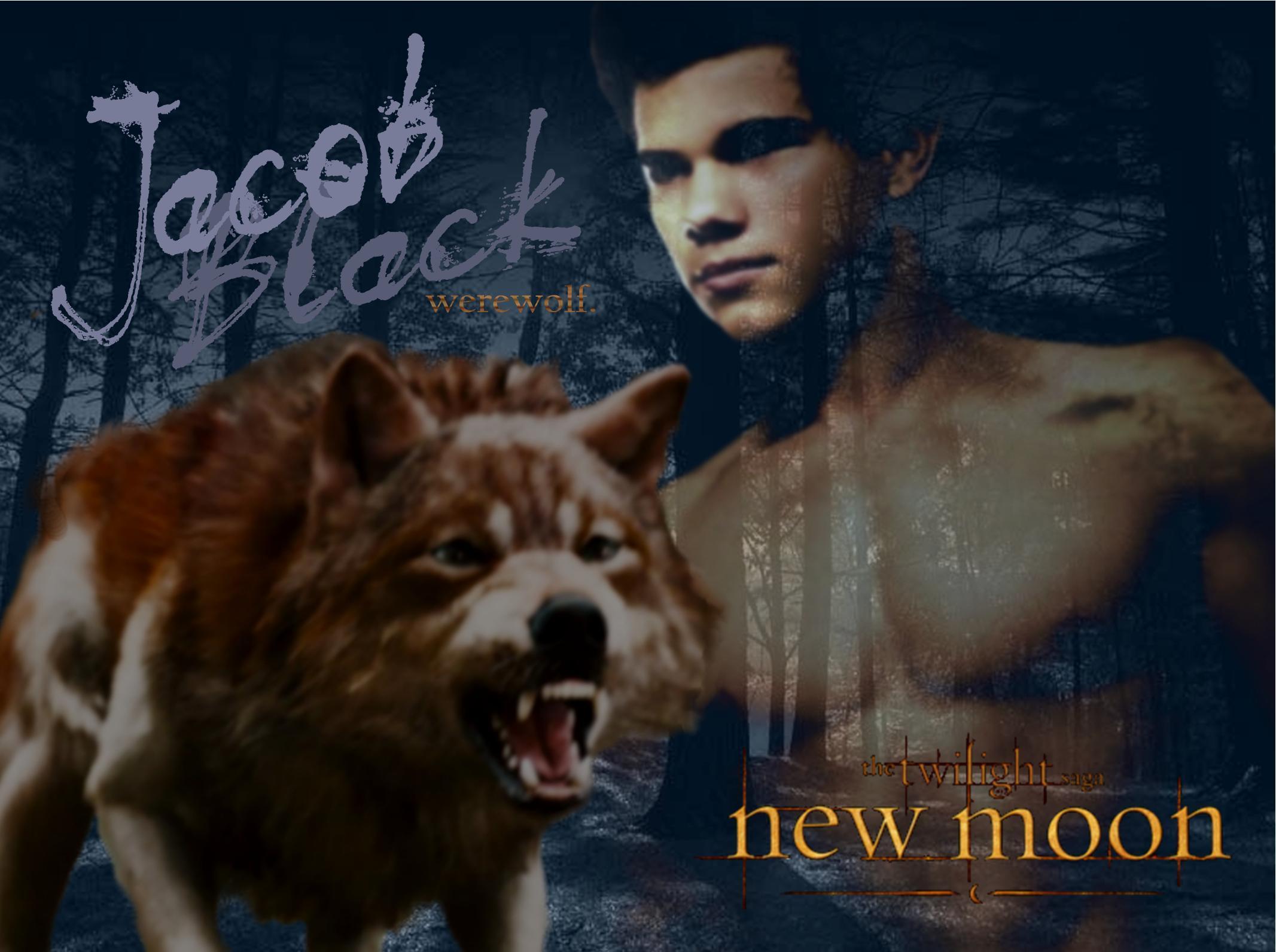 Jacob Black New Moon 69