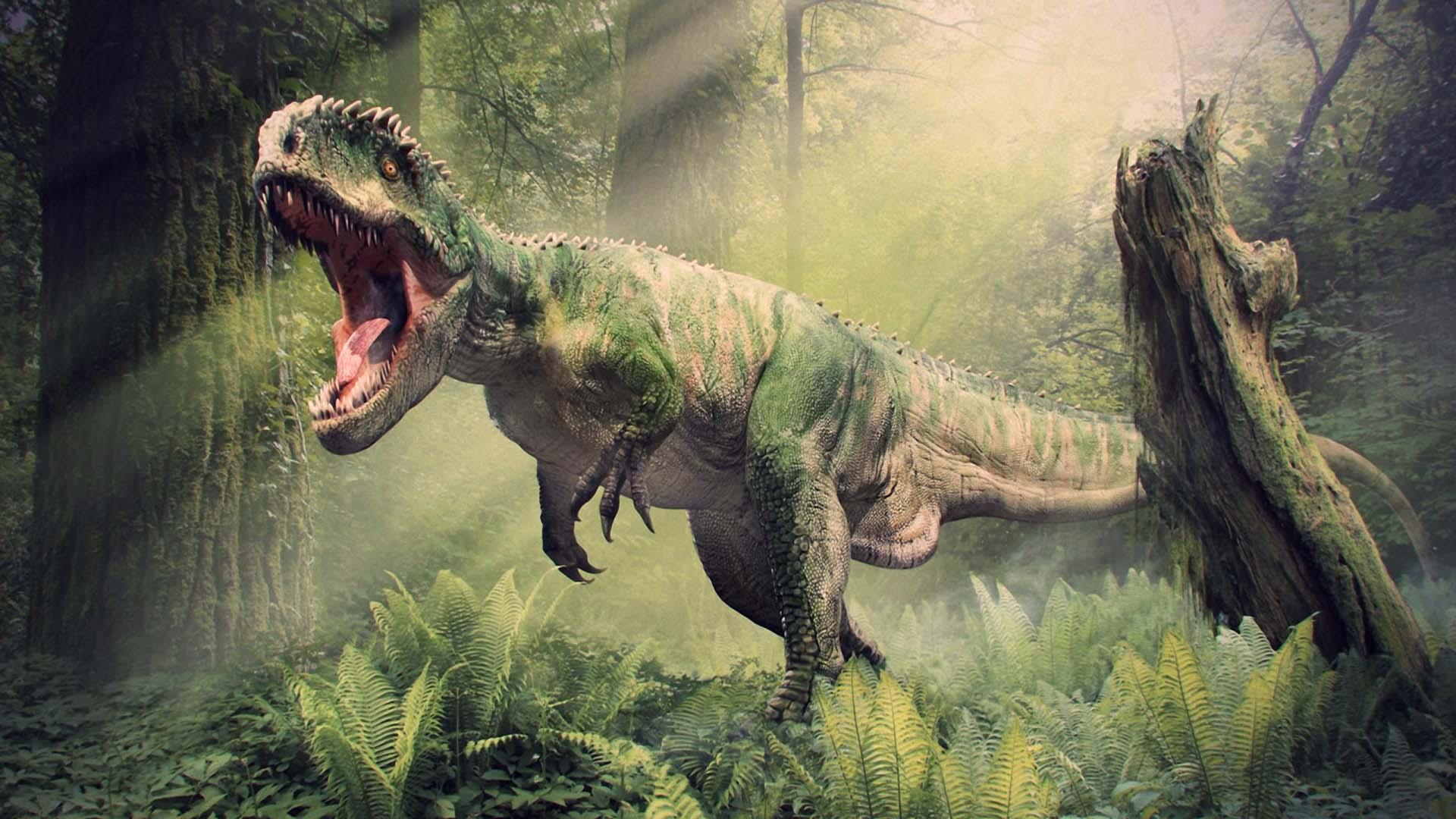 Wallpapers tyrannosaurus rex wallpaper cave for Tyranosaurus rex
