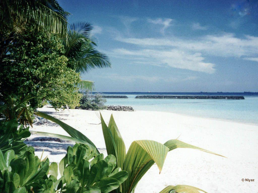 Hd Tropical Island Beach Paradise Wallpapers And Backgrounds: Tropical Beach Wallpapers