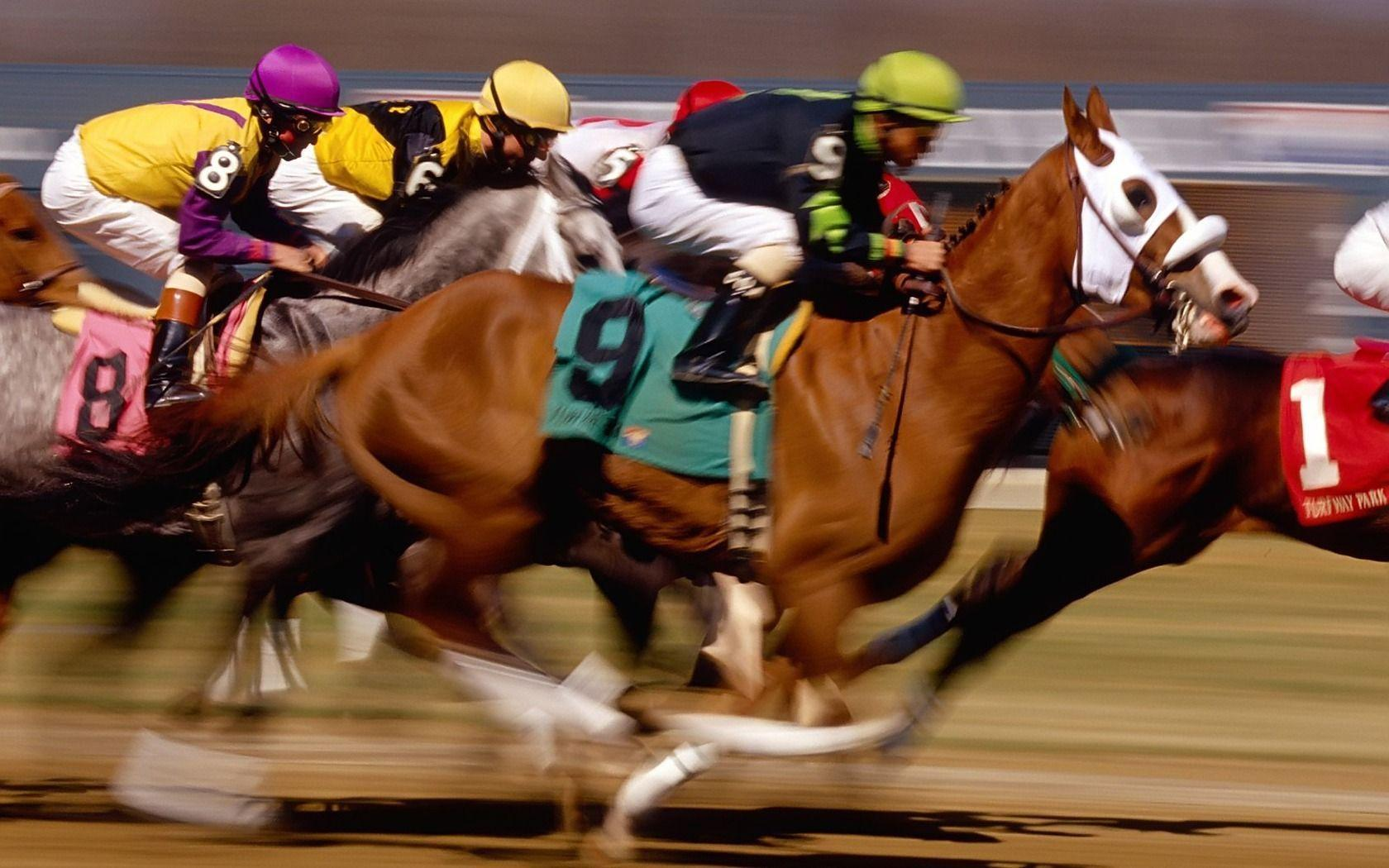 Horse Racing Wallpapers Wallpaper Cave