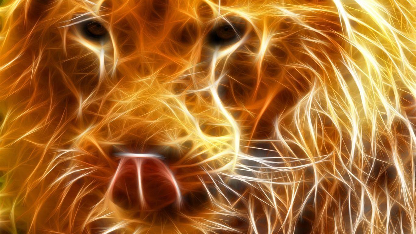 Cool Animal Wallpapers Hd Widescreen 11 HD Wallpaperscom