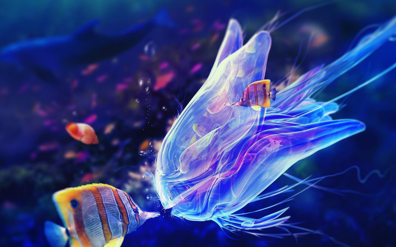 Jellyfish Wallpapers Wallpaper Cave