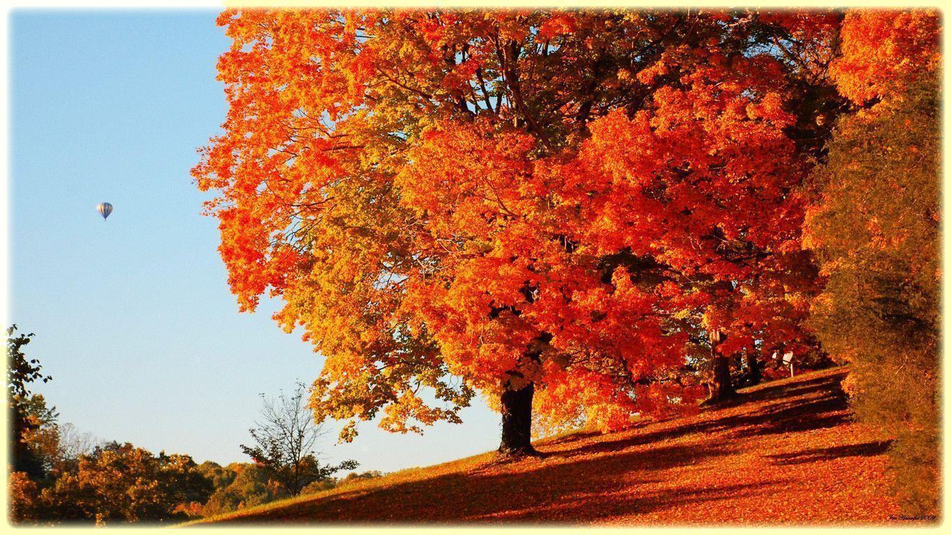 Fall scenery backgrounds wallpaper cave for Sfondi autunno hd
