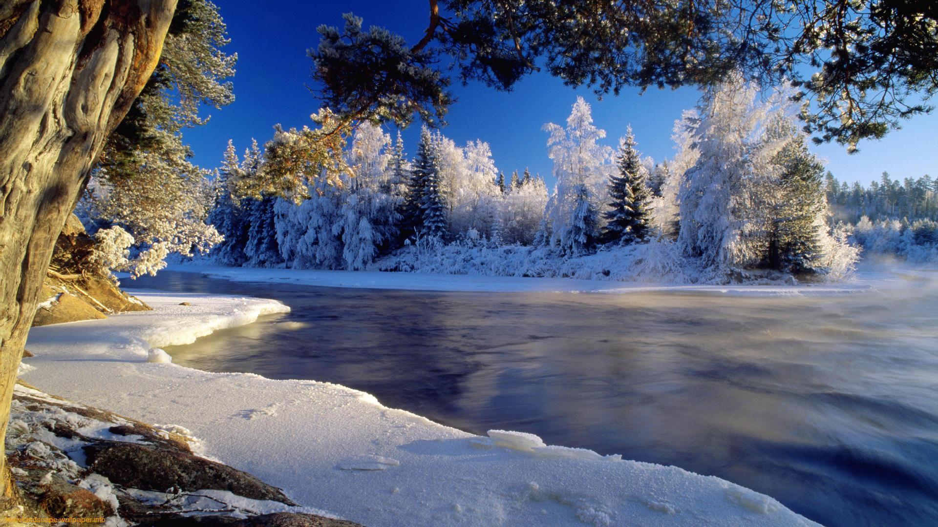 winter nature best wallpapers ever -#main