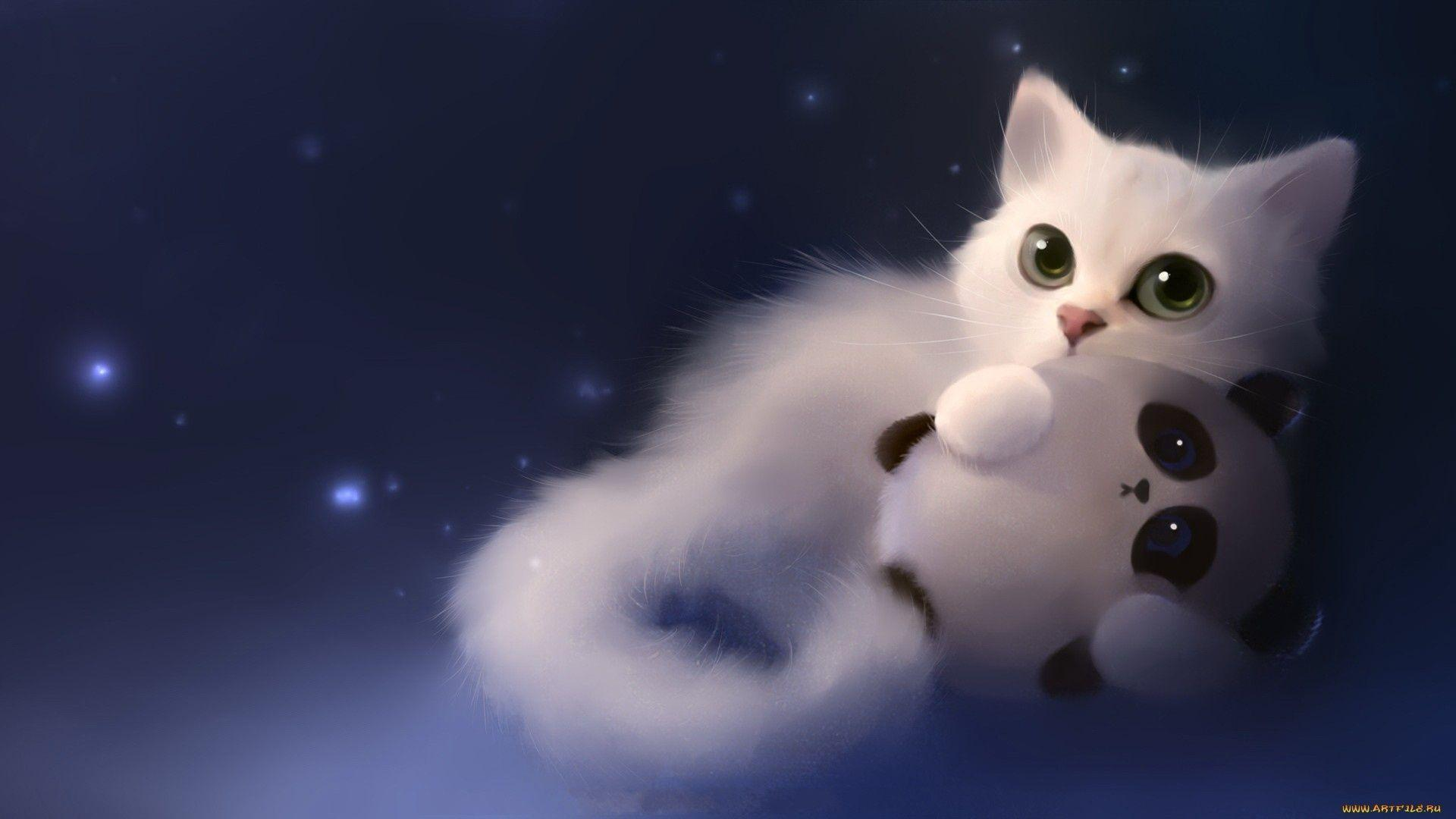 Cat Wallpapers 1 Wallpapers and Backgrounds