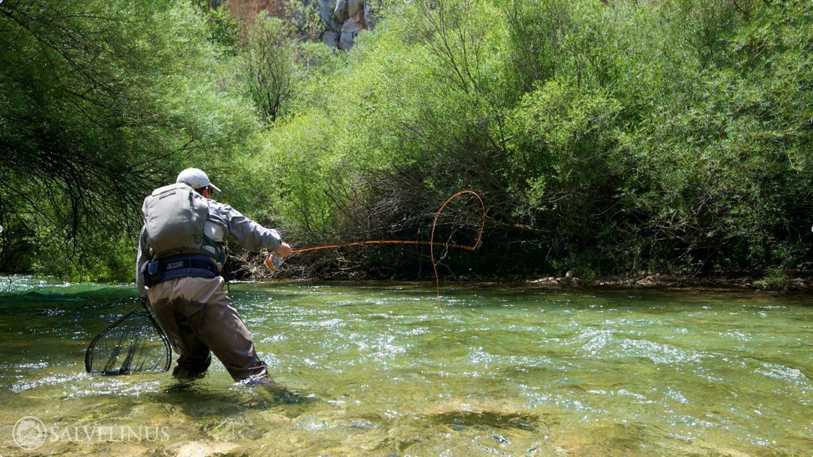 Trout fishing wallpapers wallpaper cave for Fly fishing photos