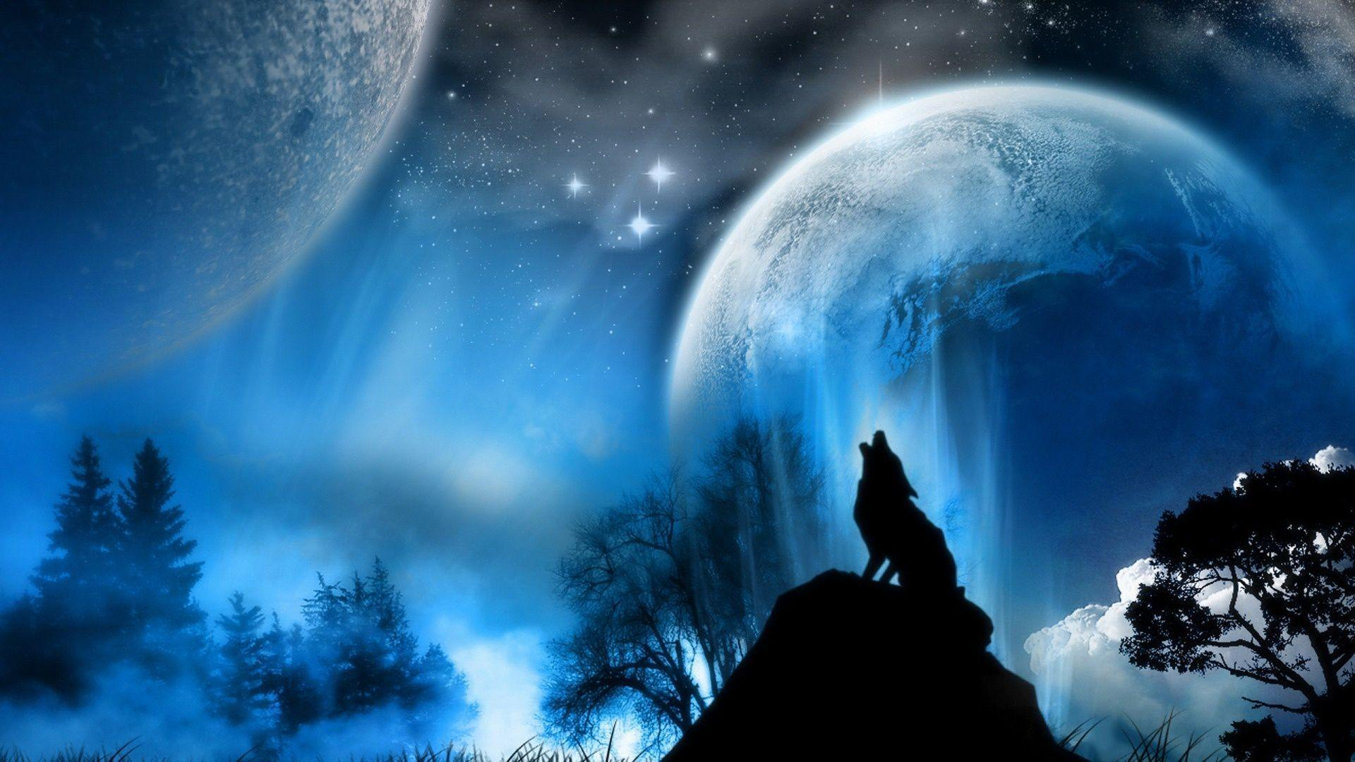 Wolf Howling wallpaper 109068