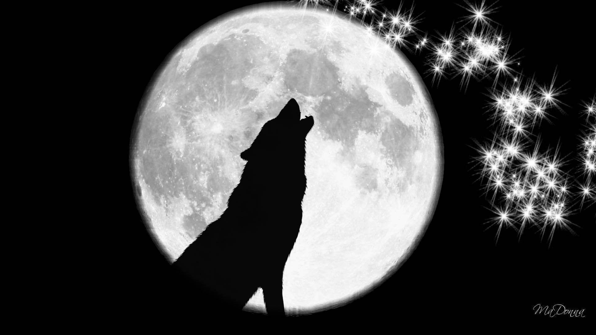 FunMozar – Wolf Wallpapers