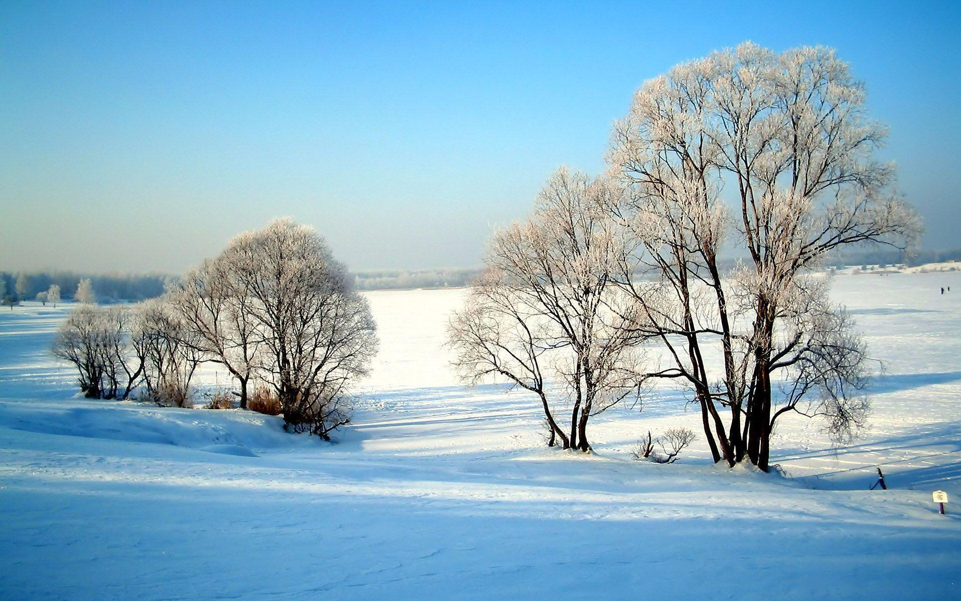 Winter Scene Wallpapers and Screensavers