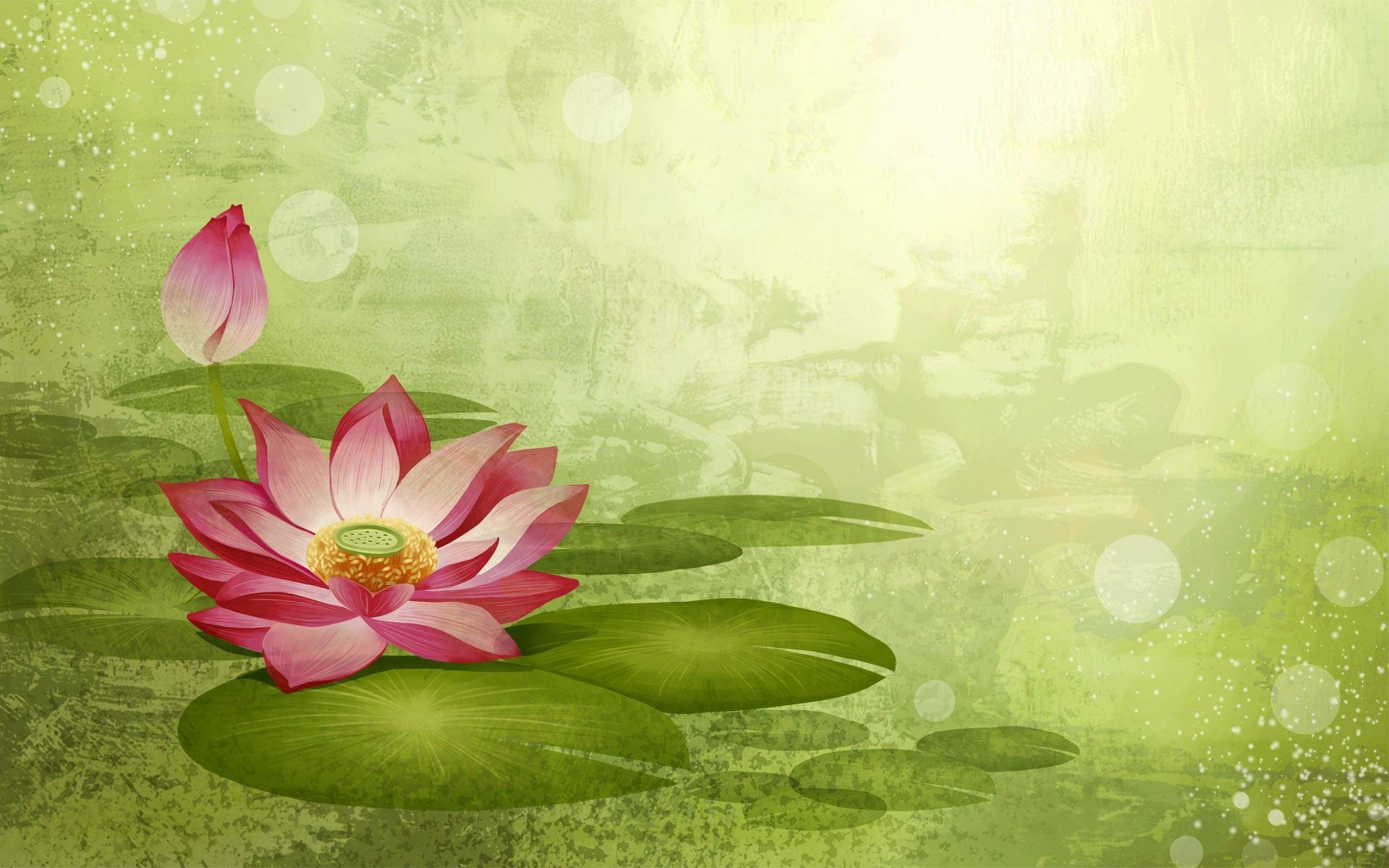 Lotus Flower Backgrounds - Wallpaper Cave