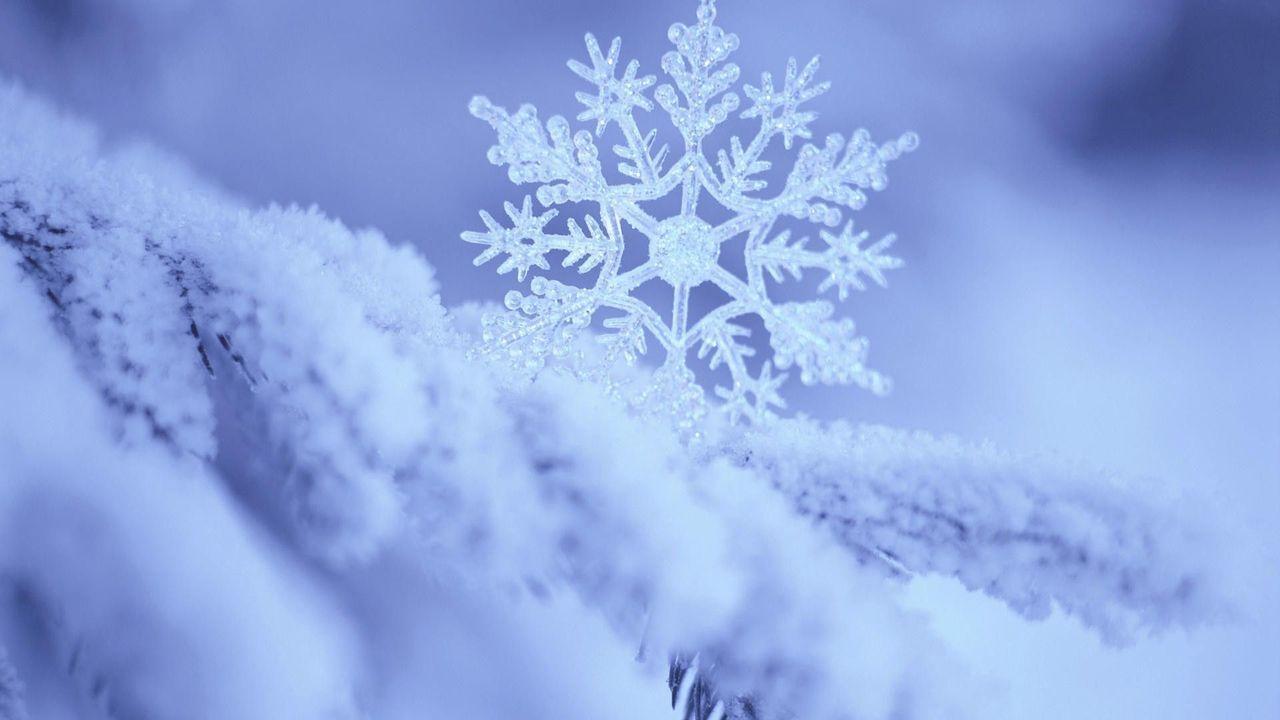perfect snowflakes | Snowflake photography, Snowflakes ... |Real Snowflakes Background