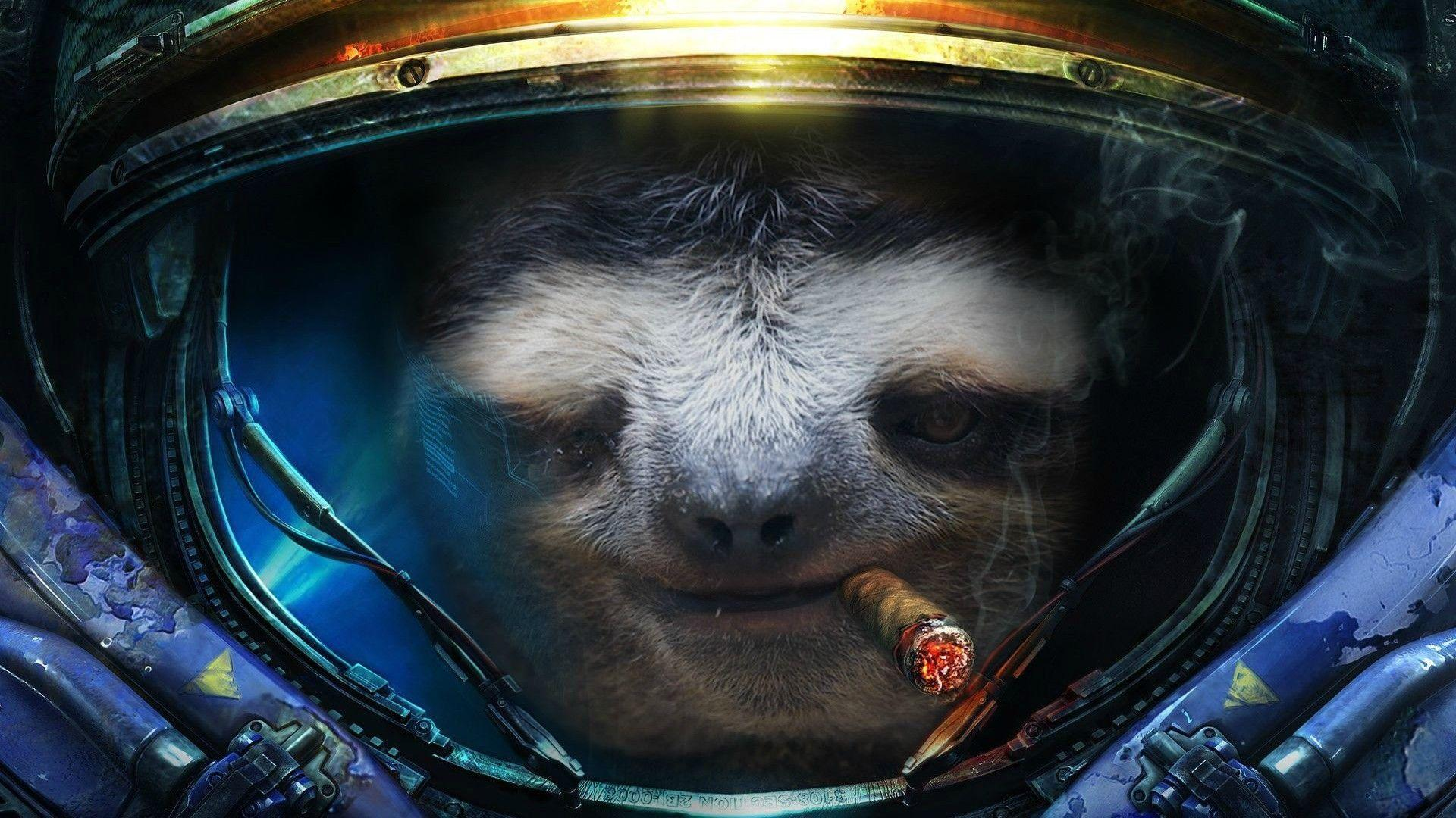 Pix For > Sloth Galaxy Wallpapers