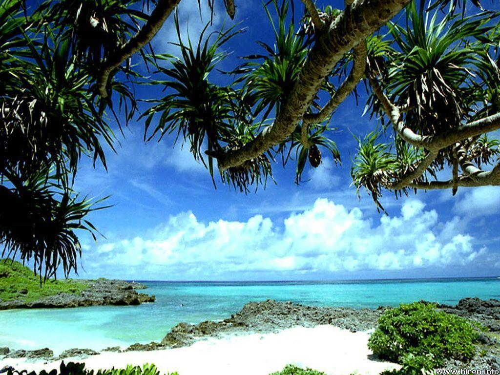 Tropical Beach Screensavers And Wallpaper: Tropical Beach Backgrounds