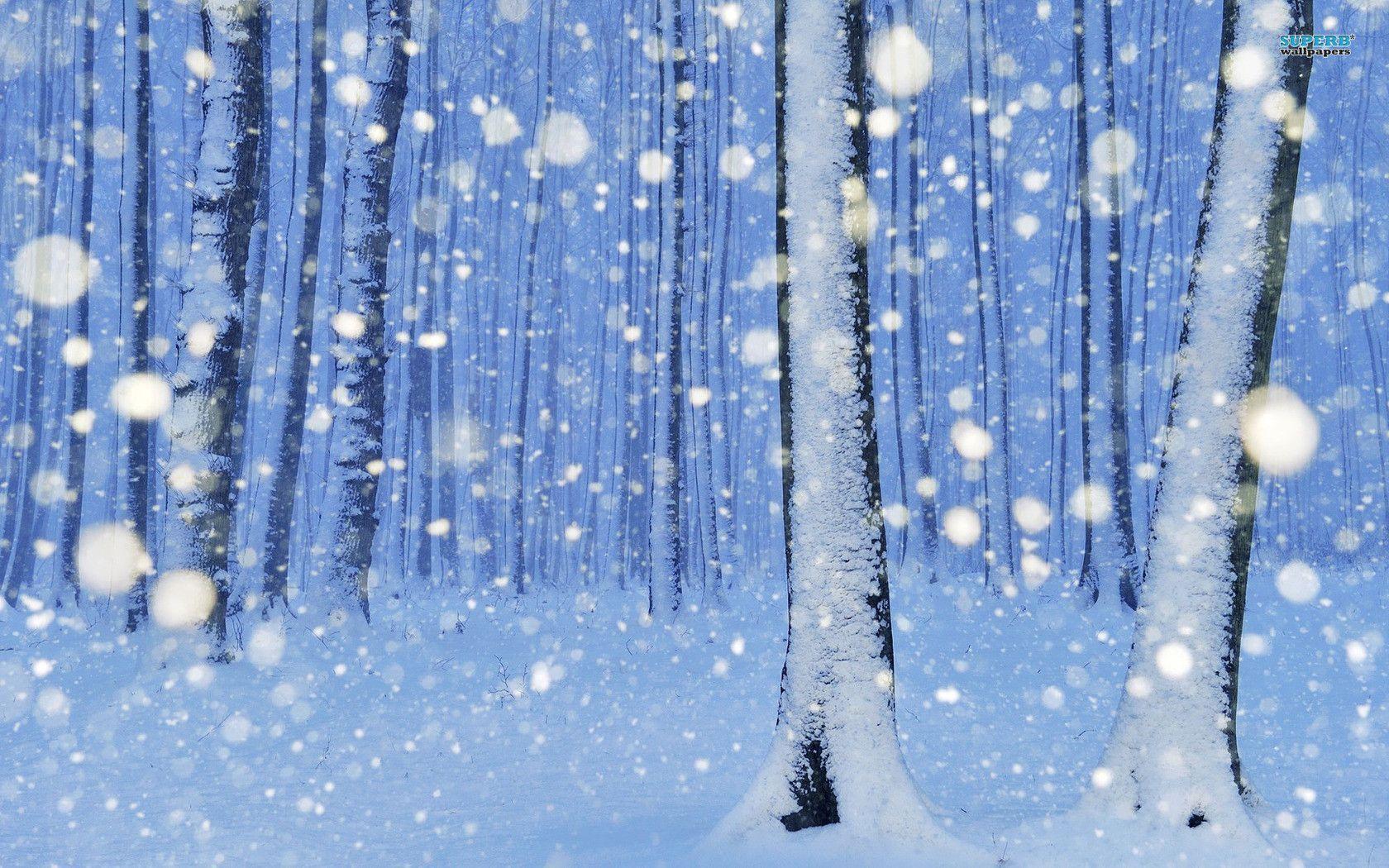 обои зима снежная на рабочий стол № 640845 без смс