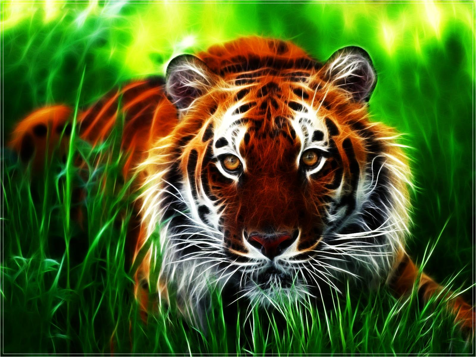 3D Tiger HD Wallpaper | Wallpaper Download