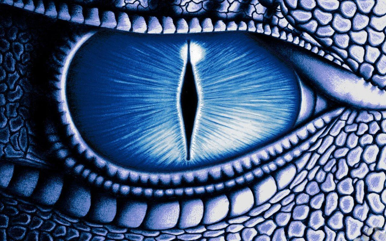 Eye blue dragon Desktop hd Wallpapers