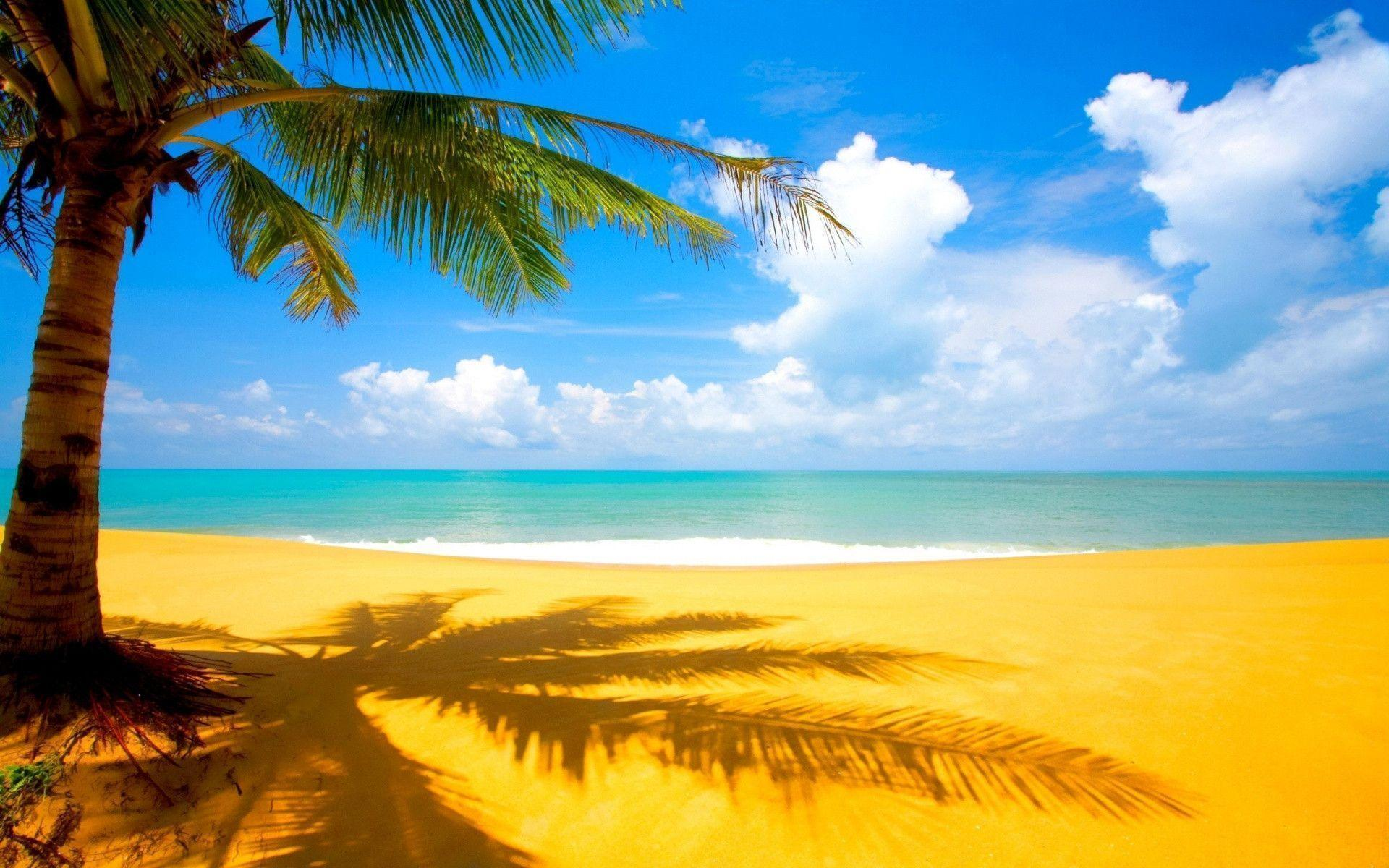 Wallpapers For > Hawaiian Beach Backgrounds